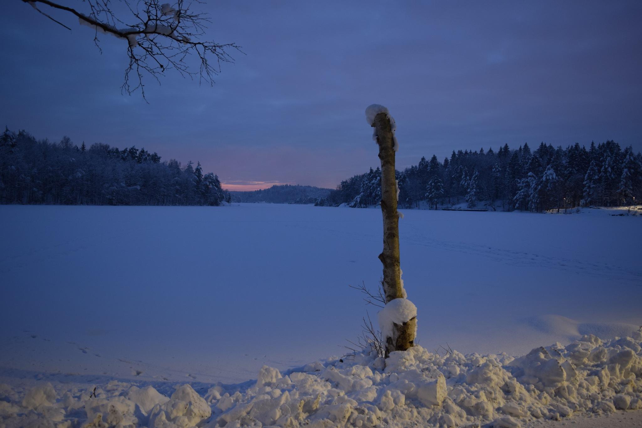 Delsjön by Svennex