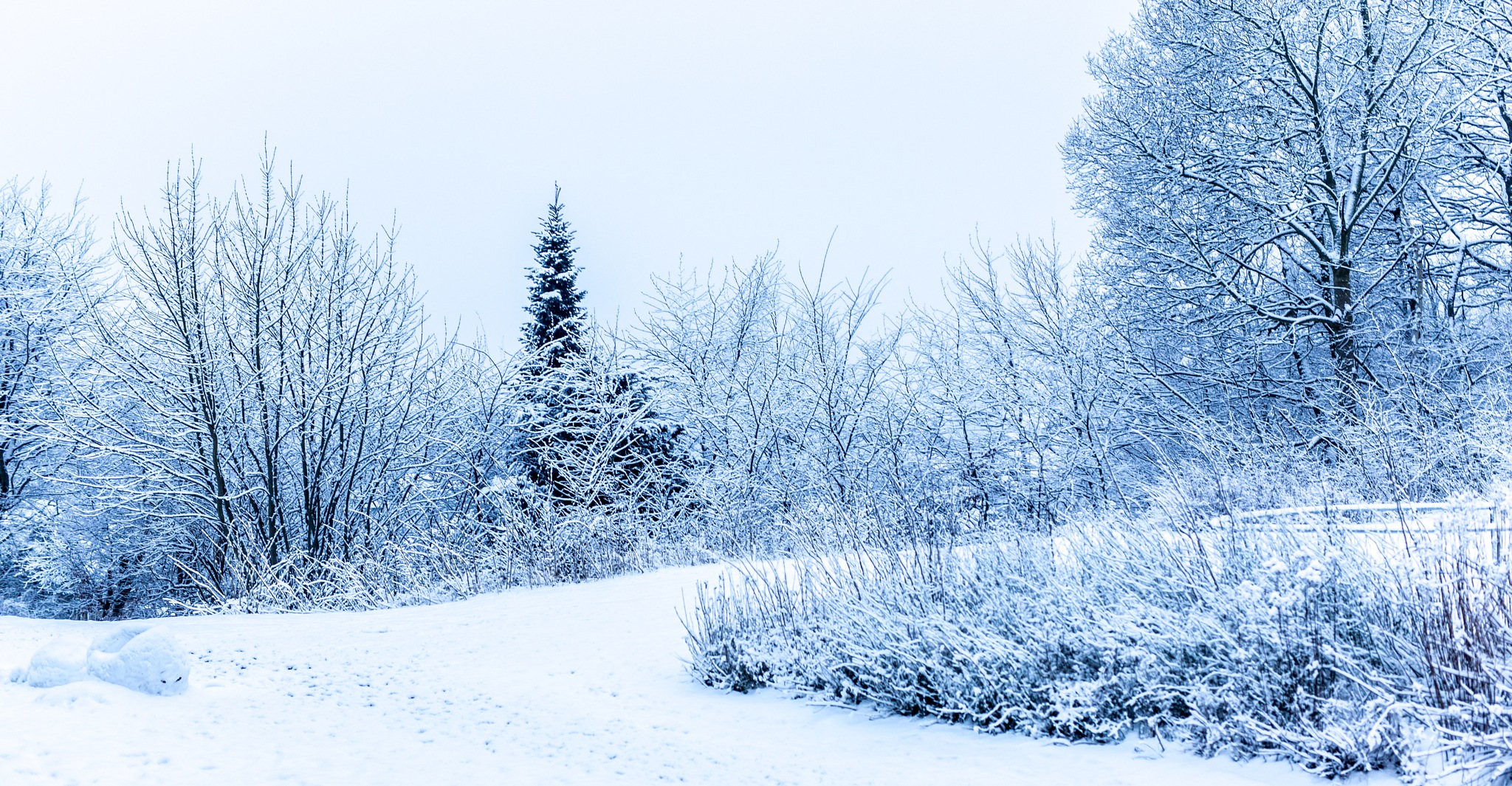 Winterland by Mads Nielsen