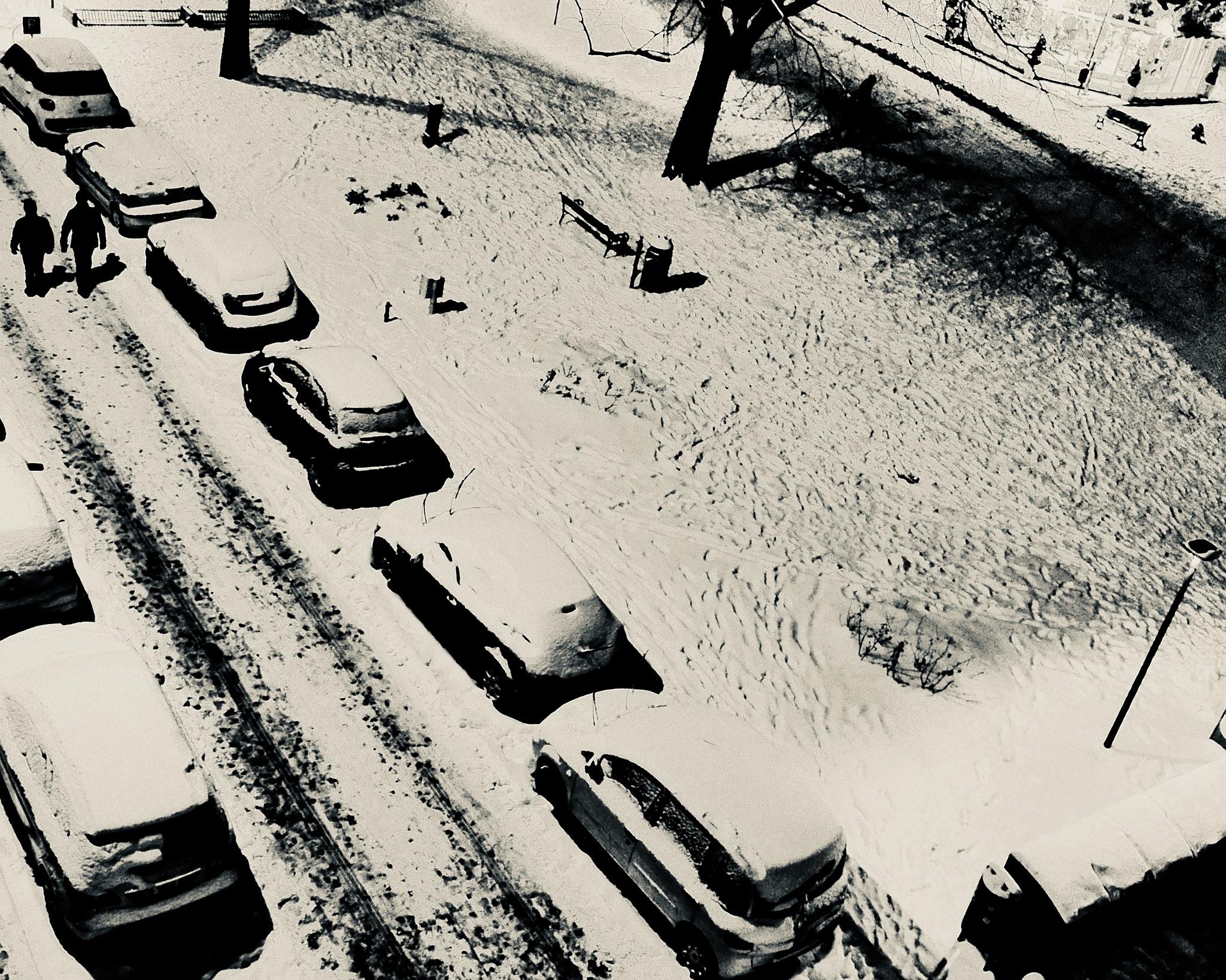 Mistery Snow by Mau056