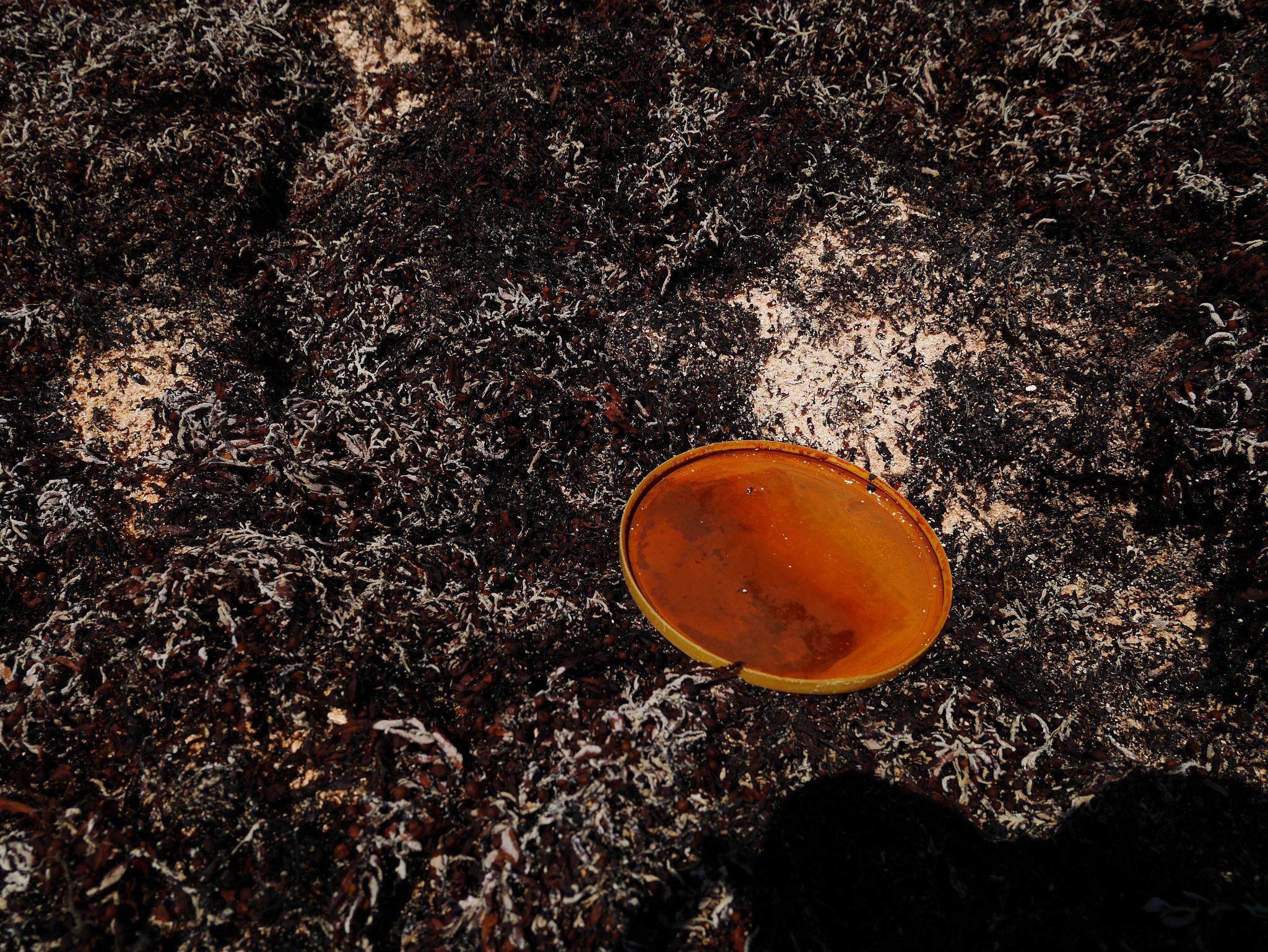 Pollution 3 by Mau056