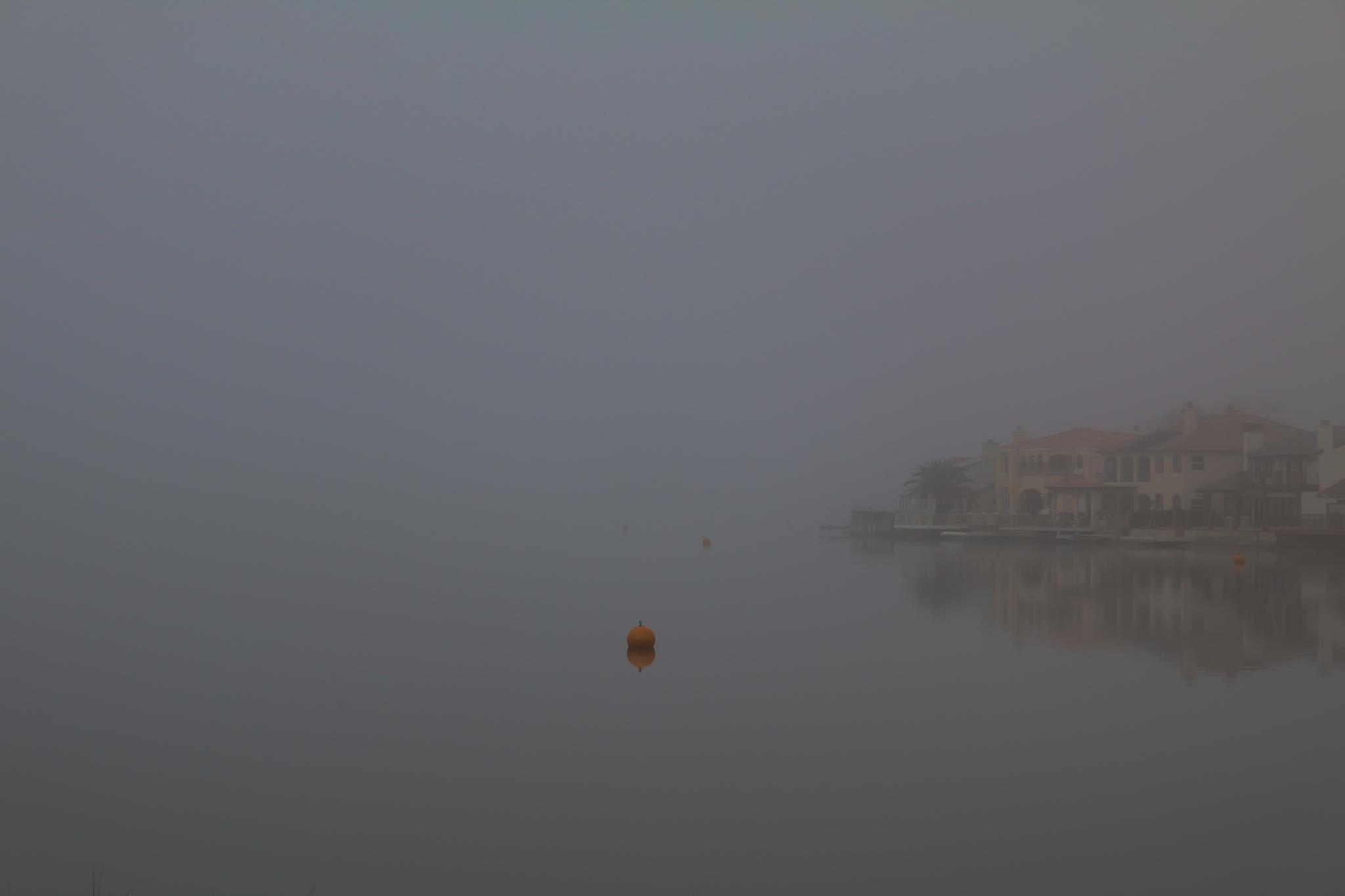 Fog over man-made lake by Kim Sanders