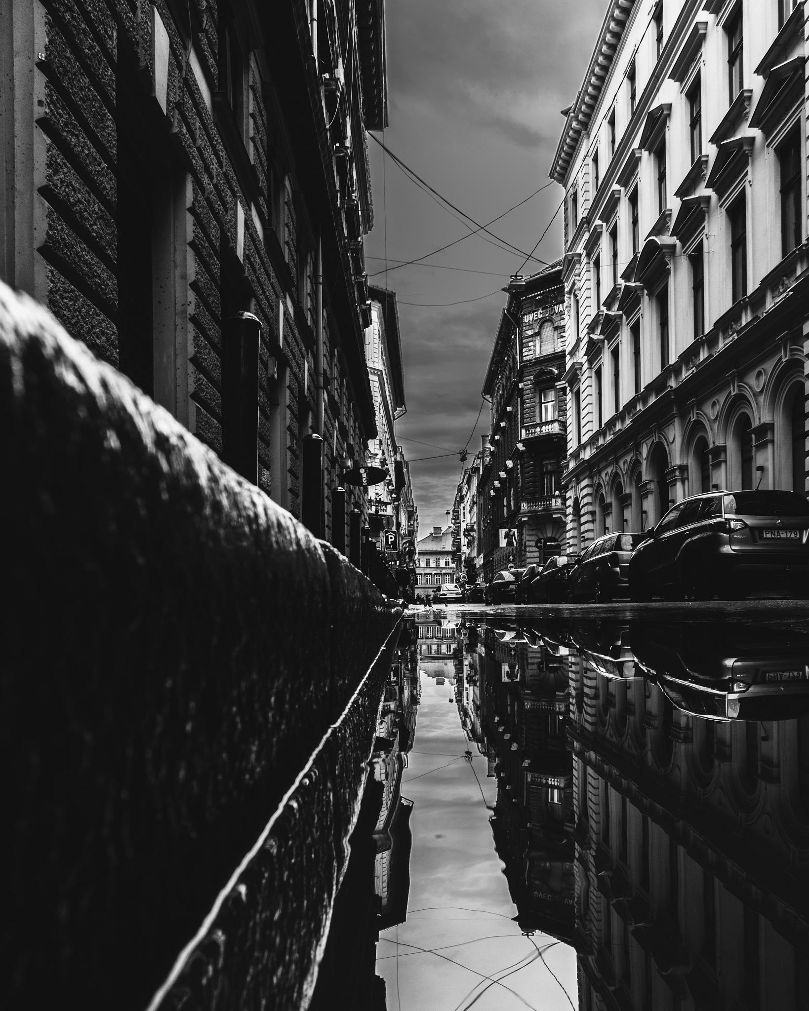Untitled by Bencsik Laszlo