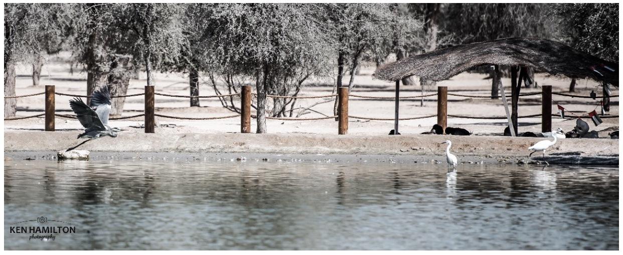 The Lakes by KenHamilton