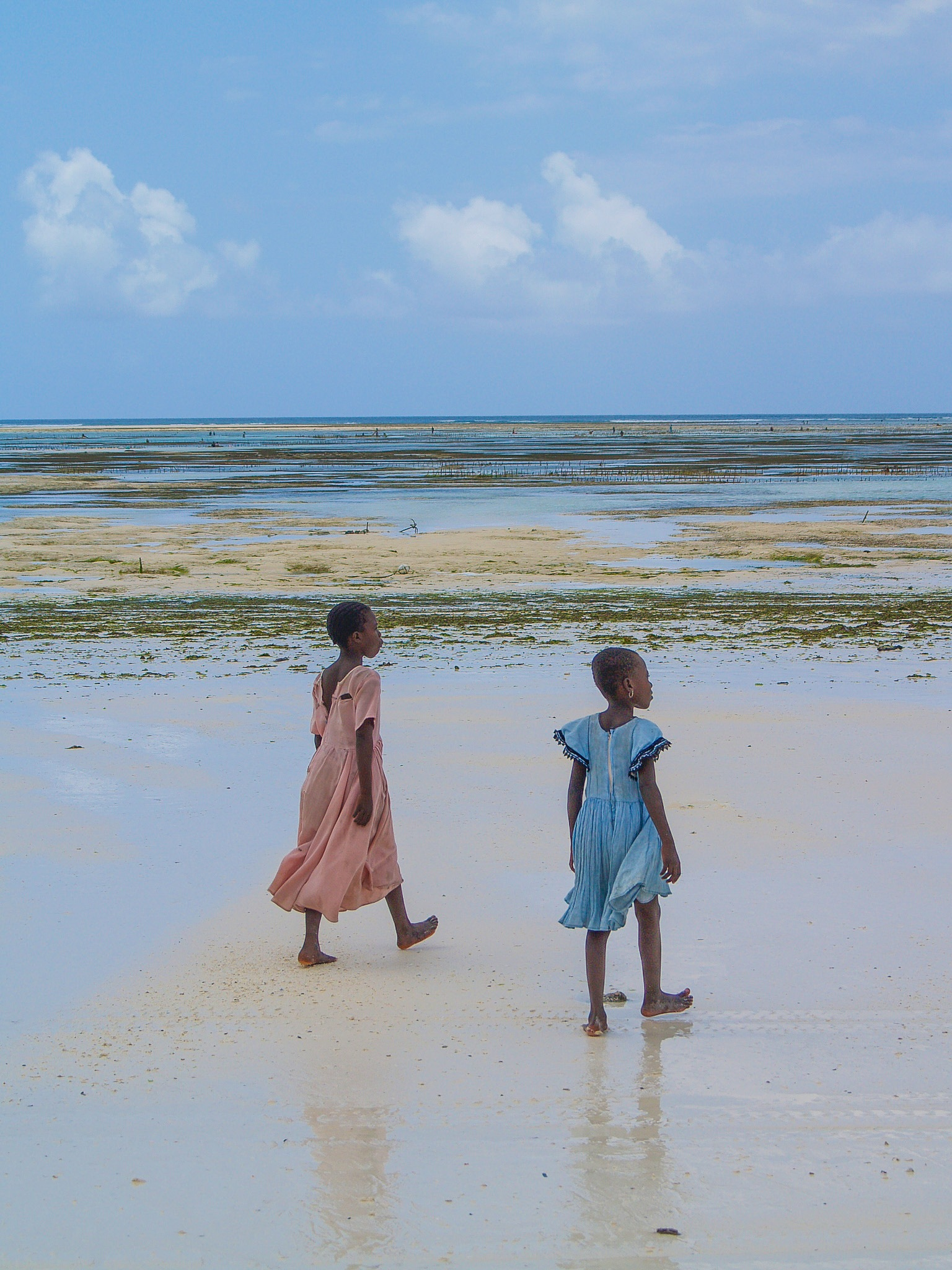 Zanzibar's colors by Pierina Mariani