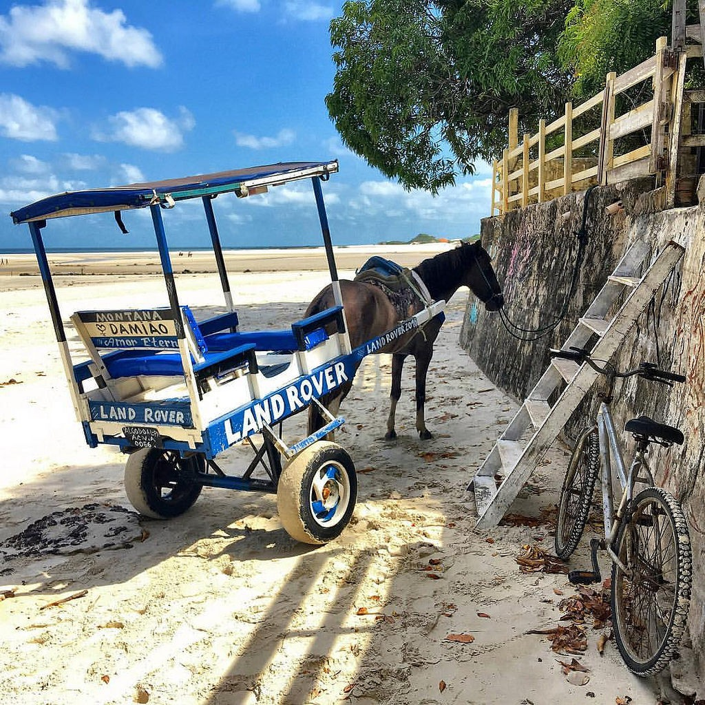 The bike and cart parking on the beach by Pierina Mariani