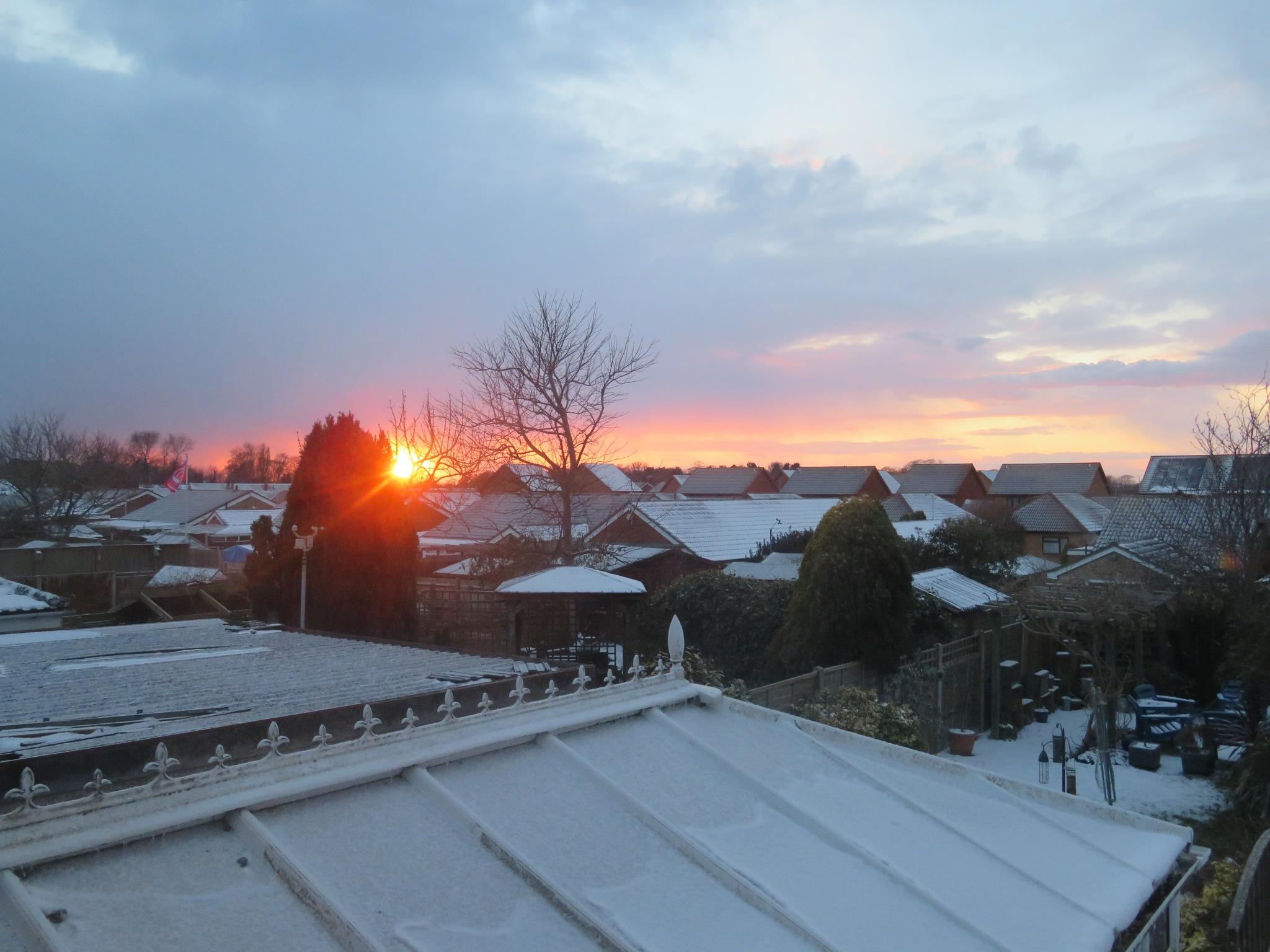 Snowy Sunset by Adam King