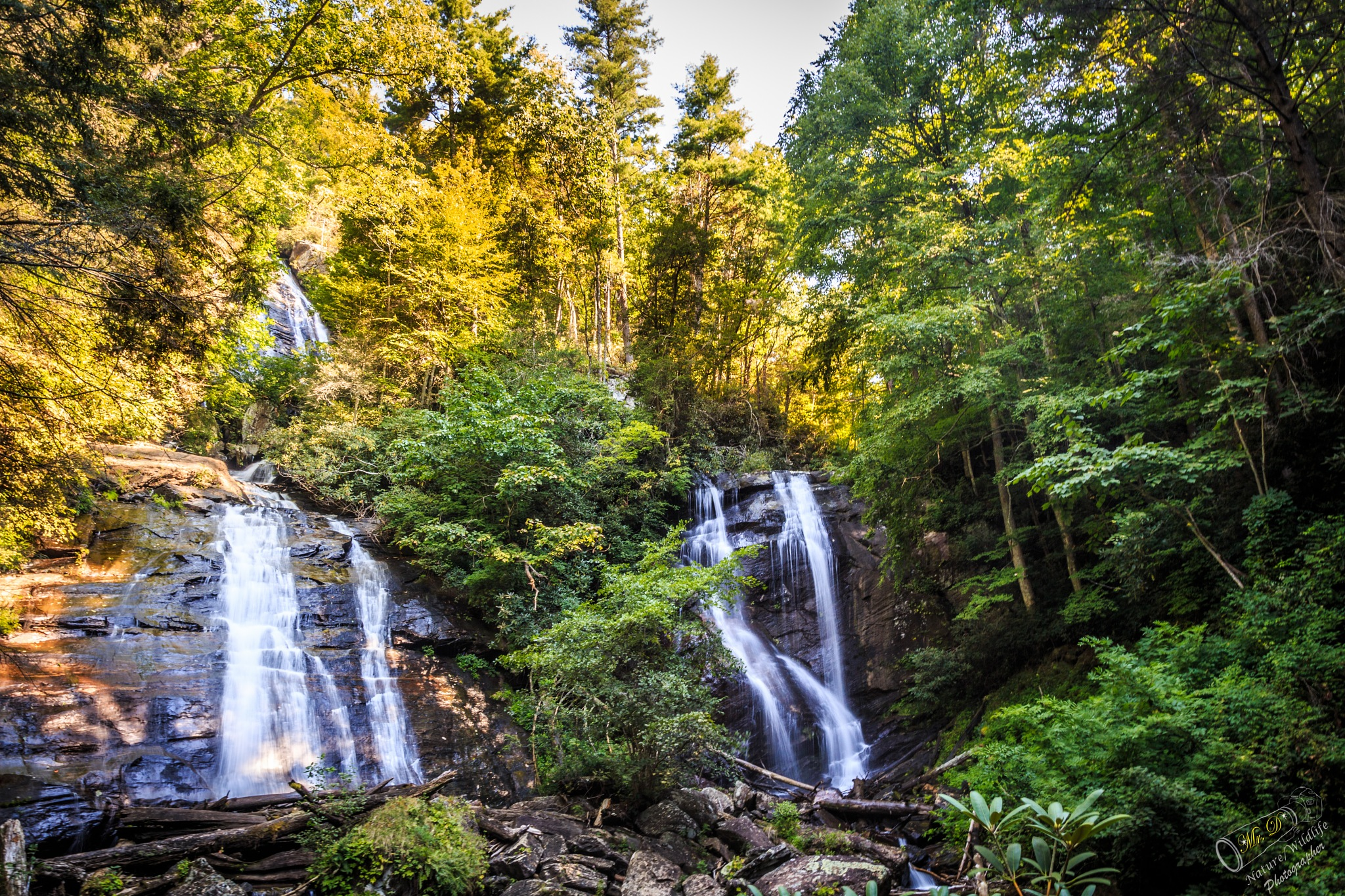 Anna Ruby Falls by Dale Mr D  Simmons