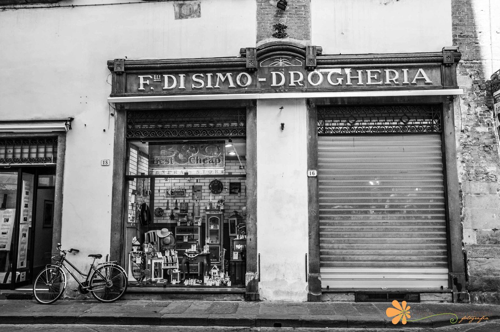 LUCCA - Italia by Carol Guerra Fadiga