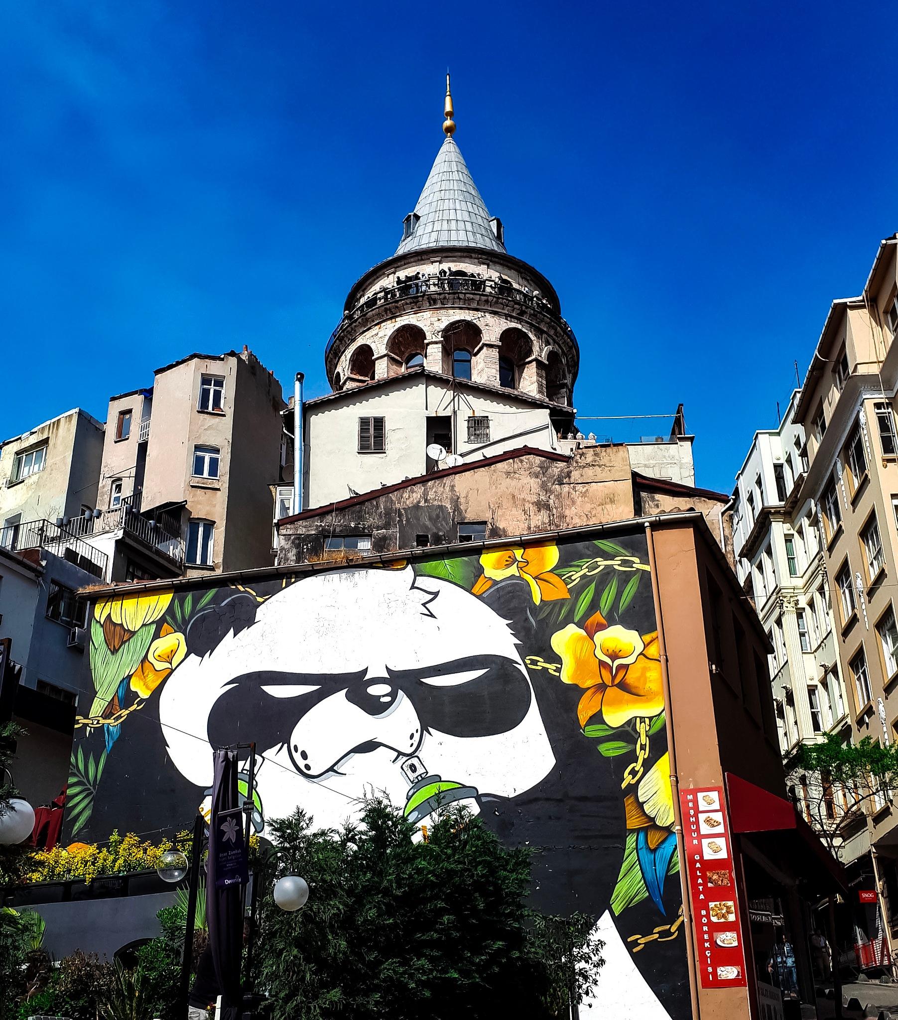 Never say no to panda by Emre Eroğlu
