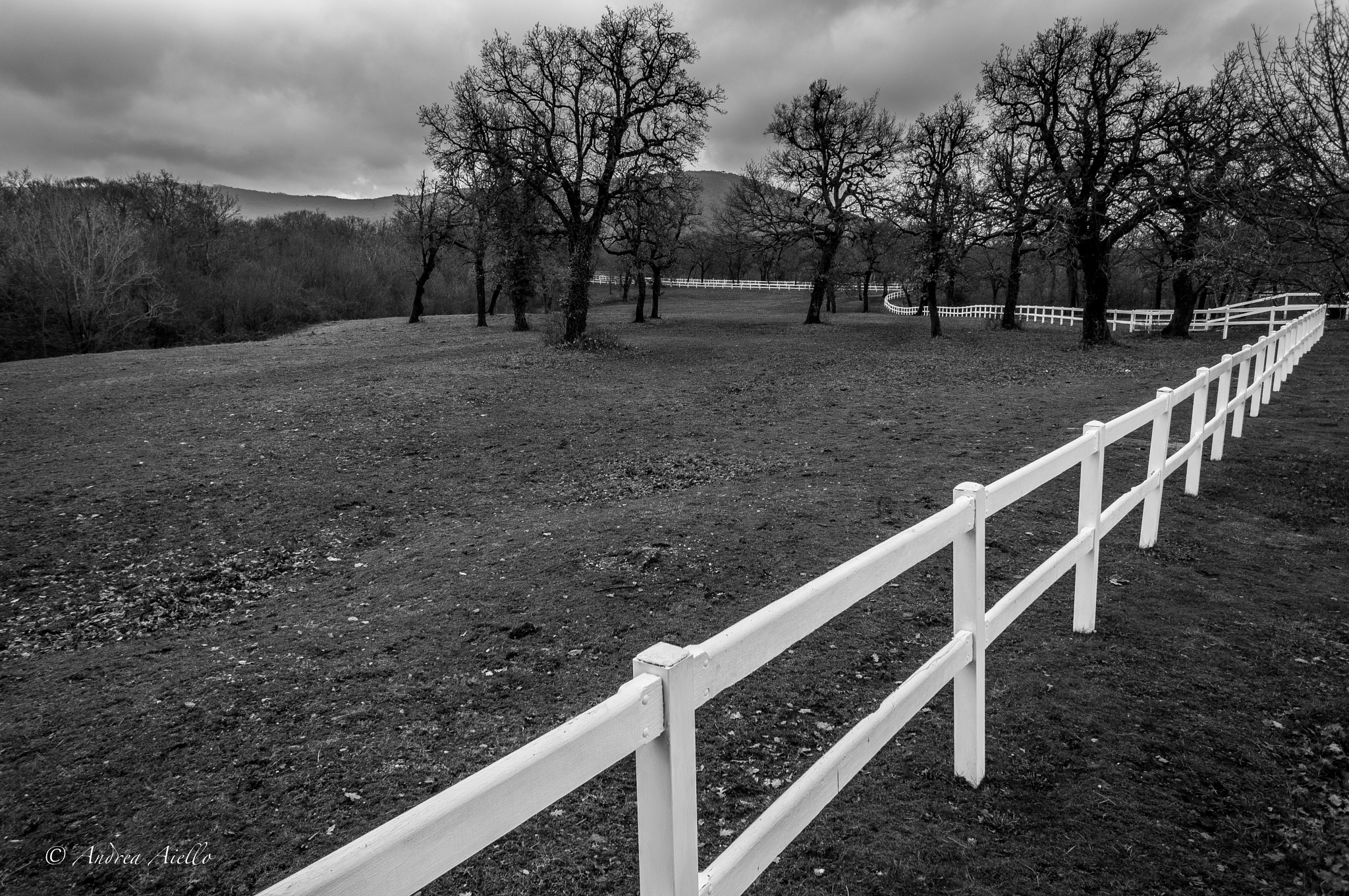 Lipica Country by Sirdan71