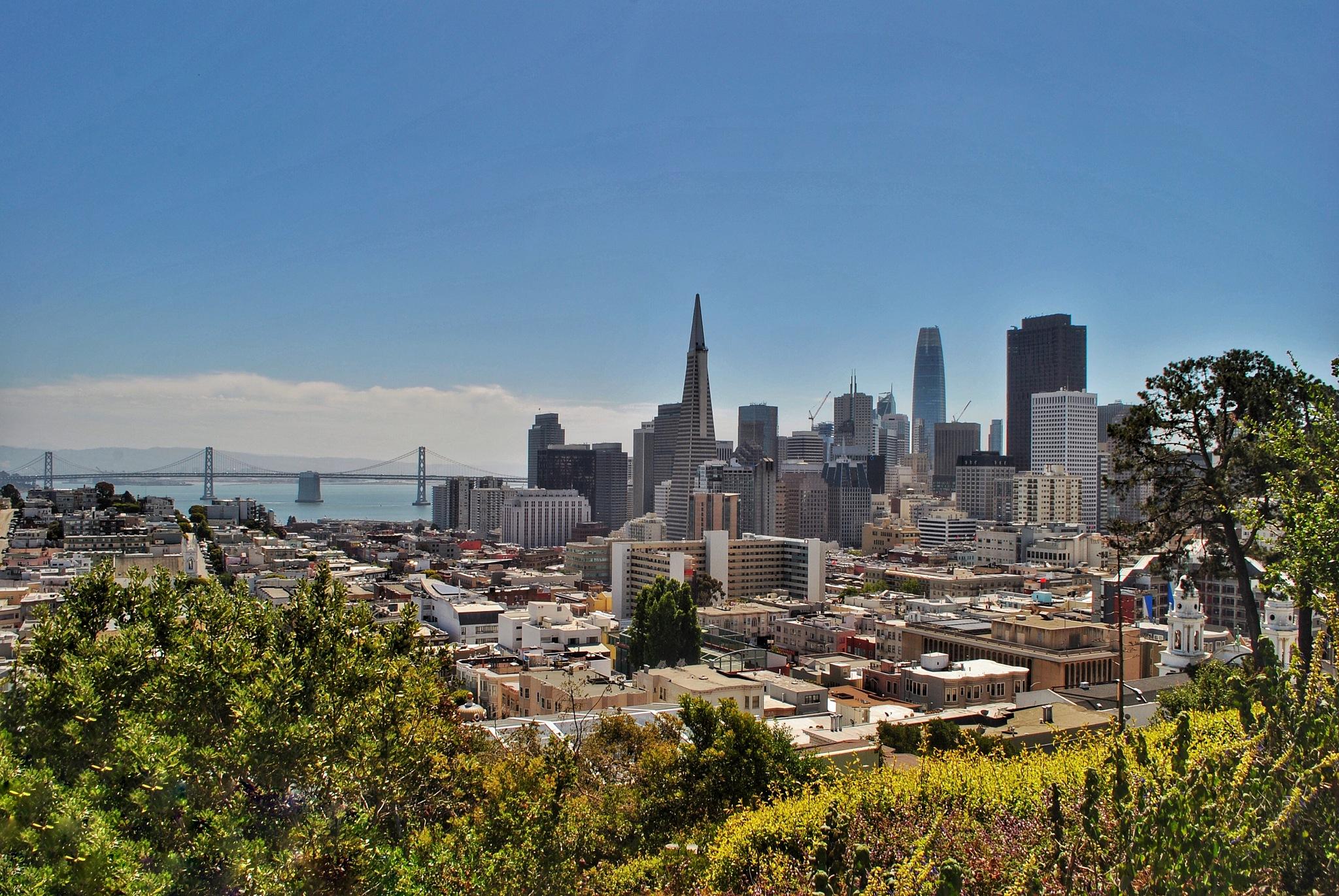 SF Skyline by Zane Rosen