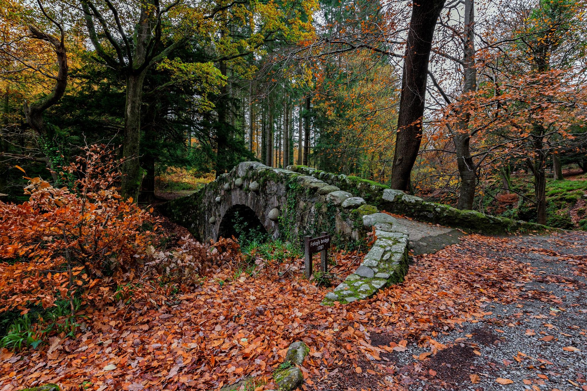 Foley's Bridge by Barrie Lathwell
