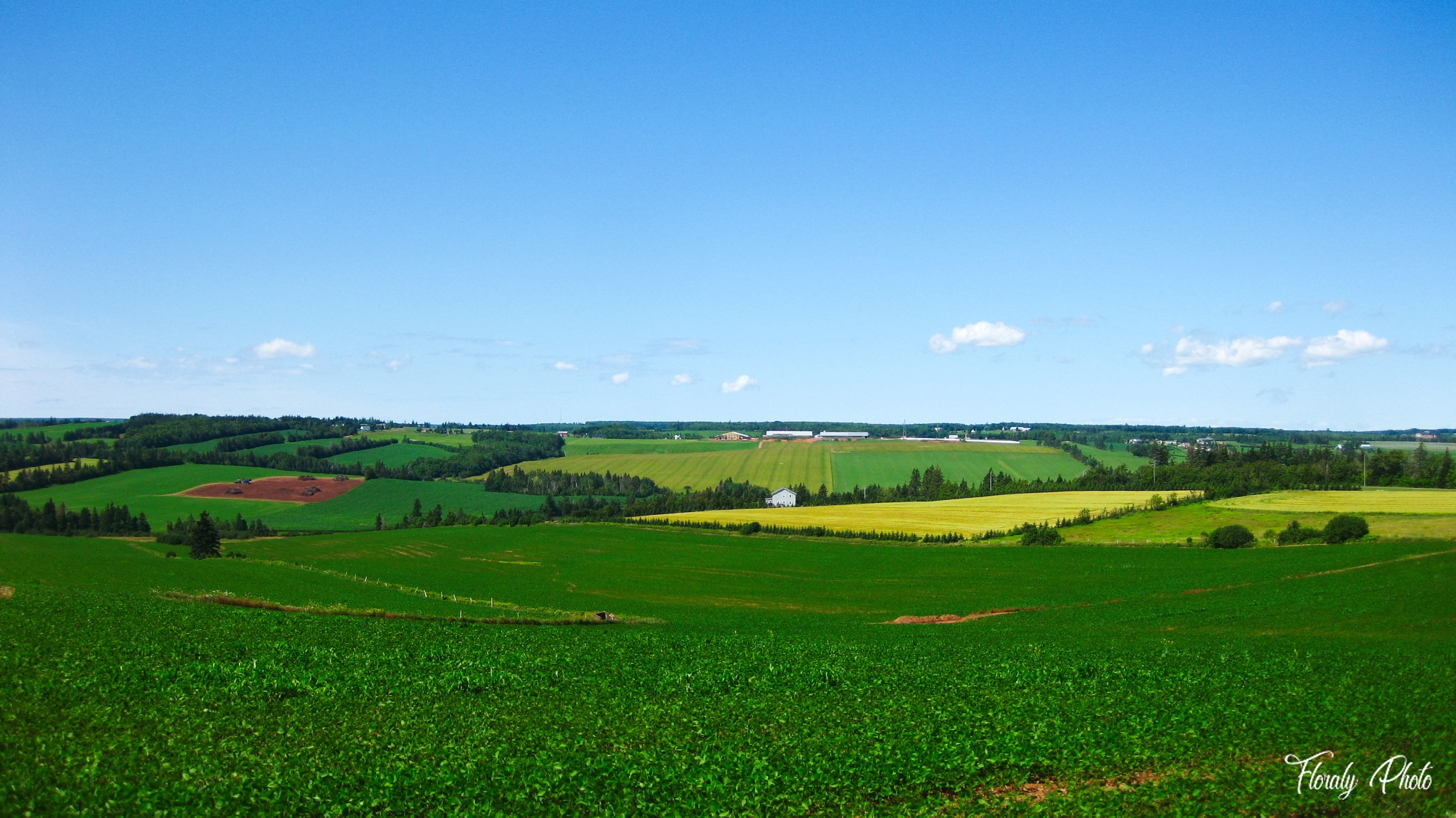 PEI lands by FloralyPhoto