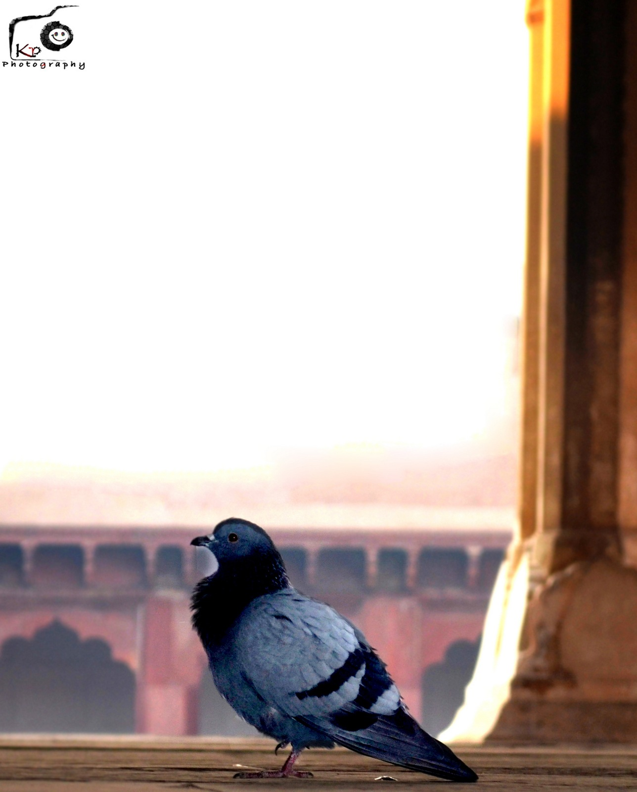 Untitled by Kshitij Patle