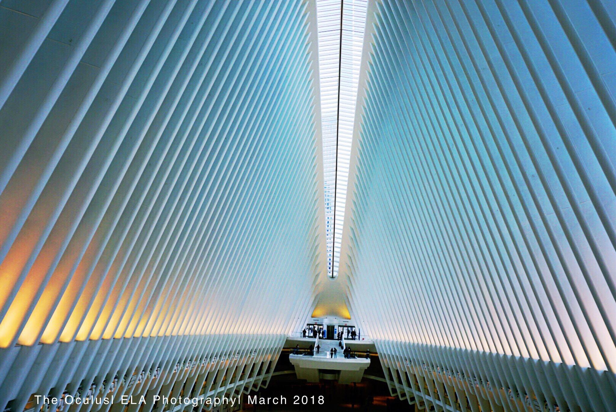 The oculus  by Ga_Bree_Ela