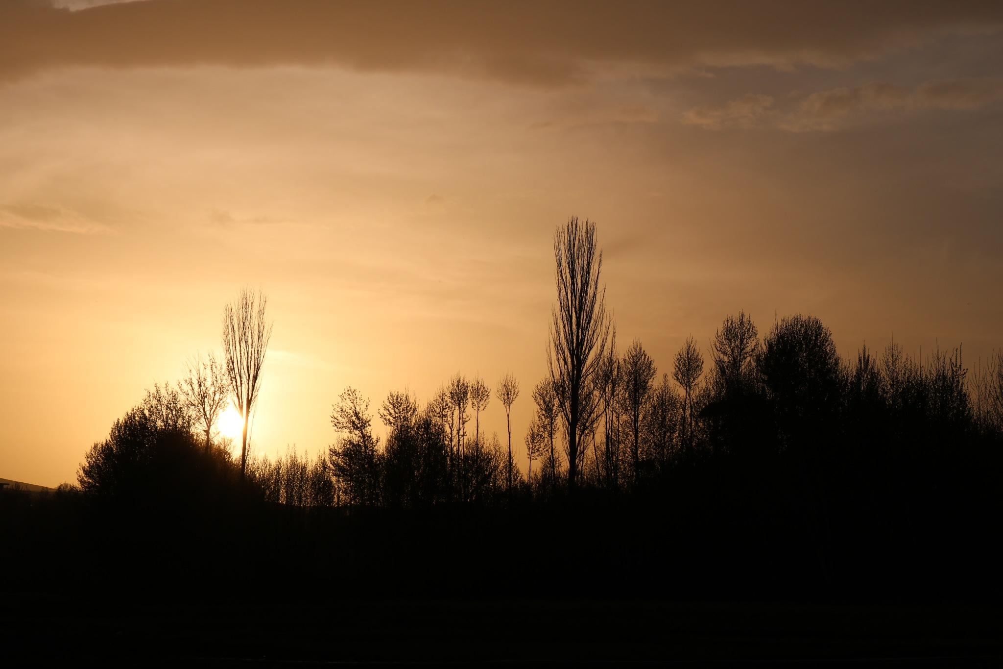 #sunset by Mahsa
