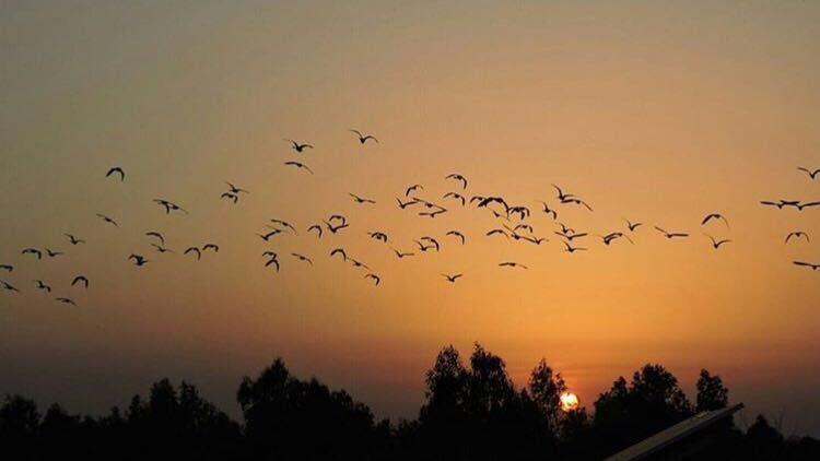 sunset in jammu kashmir by maneeshmehra