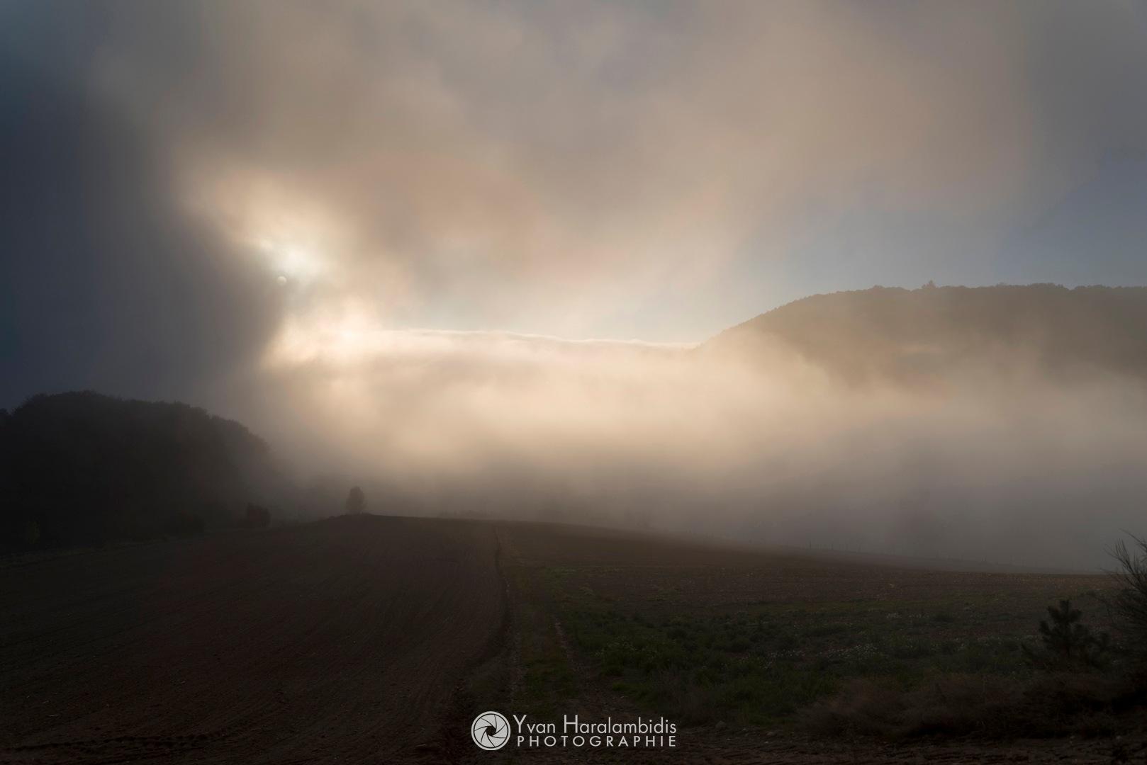 Sunbeam in fog by Yvan Haralambidis