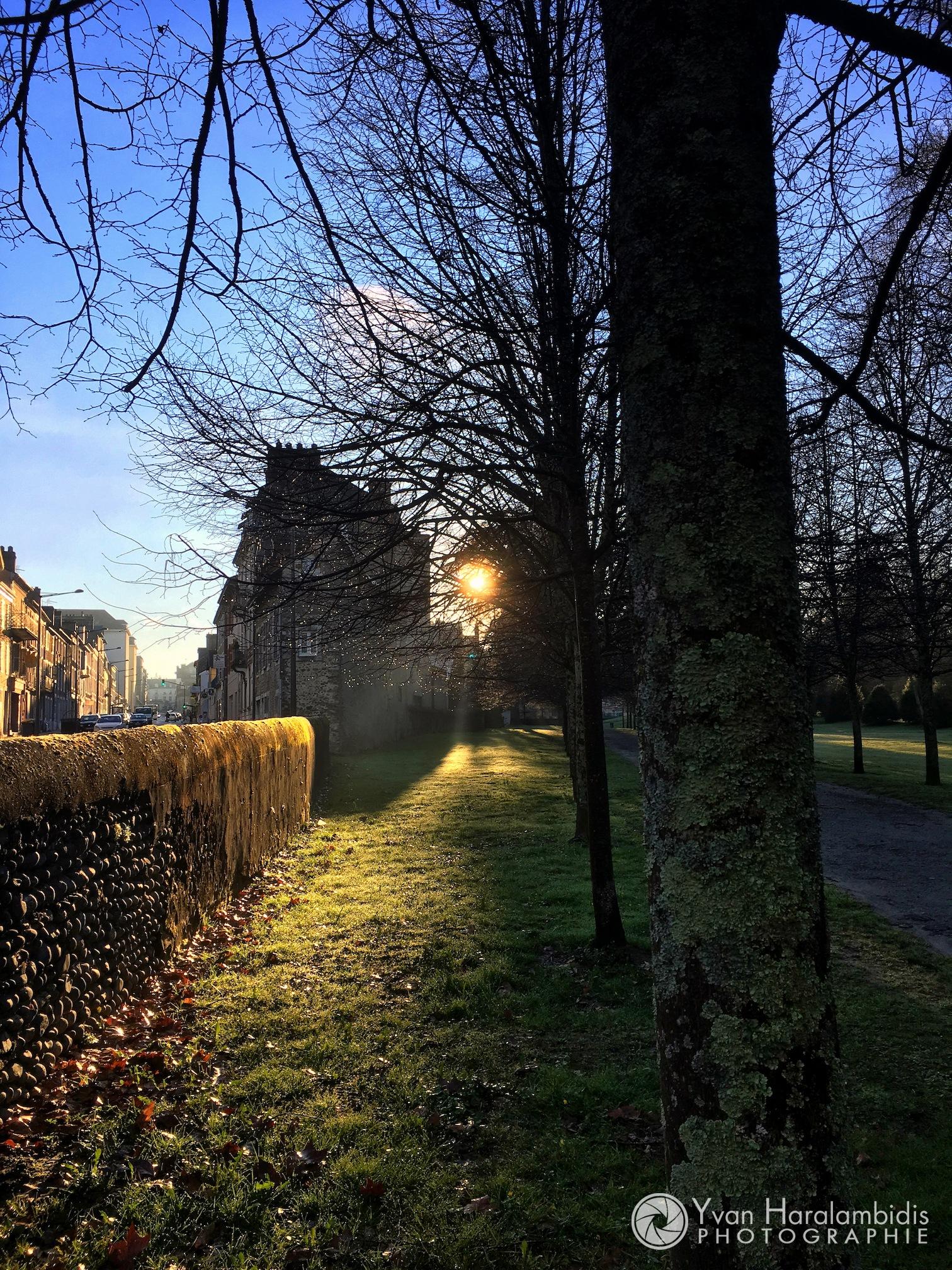 Parc du château au matin by Yvan Haralambidis