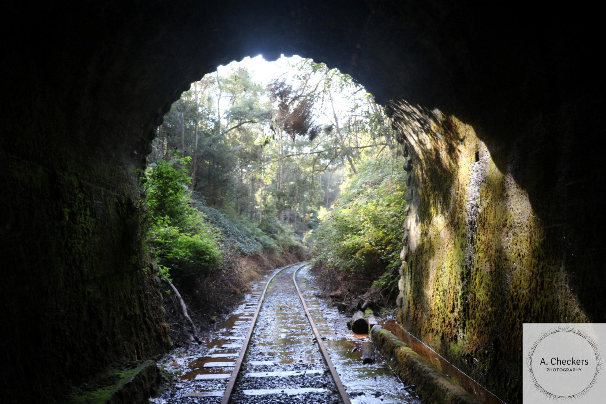 Light at the end of the tunnel. by A. Checkers Photography