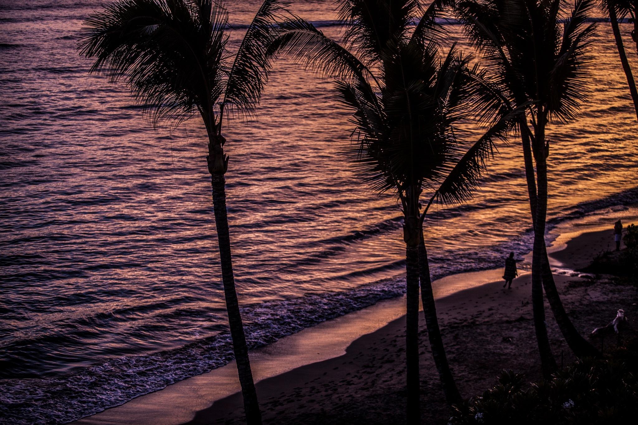 ON THE BEACH by Justine Cahn Fenu