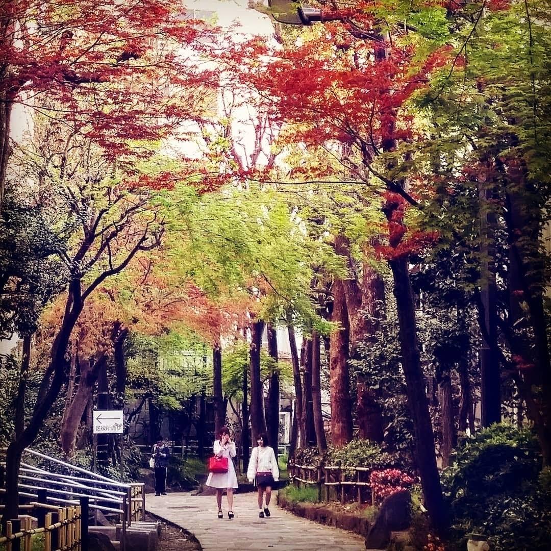 Tokyo Days 8: Gambare, atashi!! by Ian Gazny Yaacob