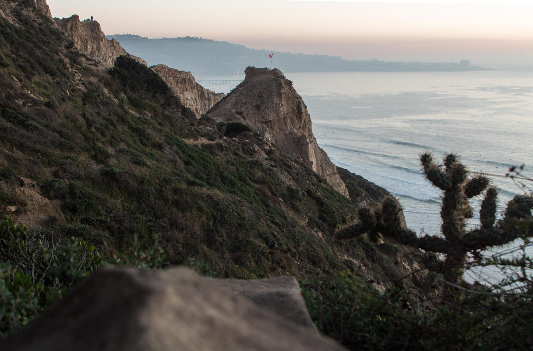 La Jolla Hillside by Andrew Renner