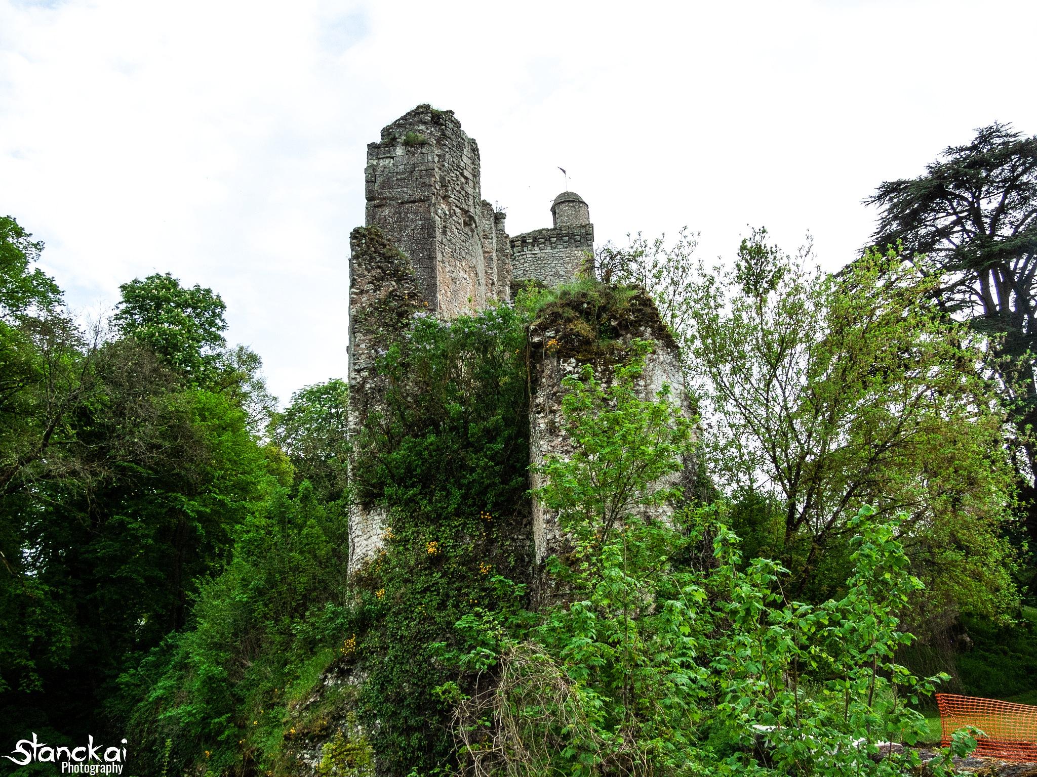 Ruins of the Vendome castle #2 by CARDET Kévin