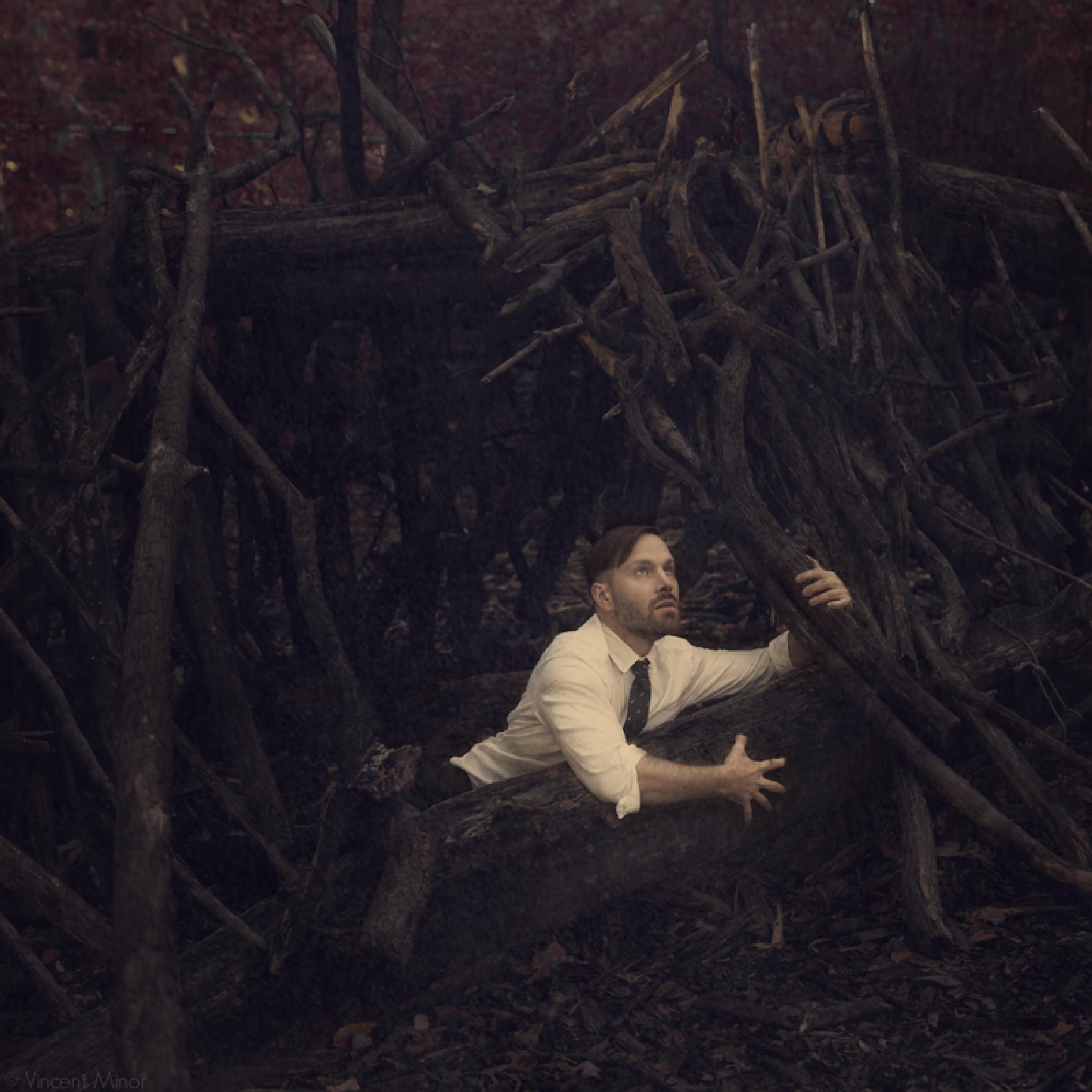 House Of Sticks by vincentminor