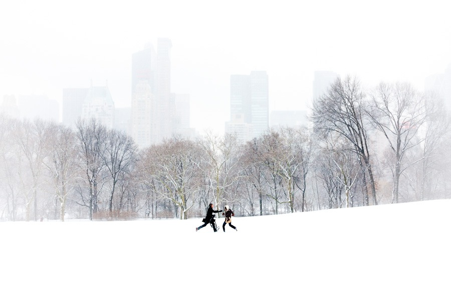 The Chase, Central Park by James Maher