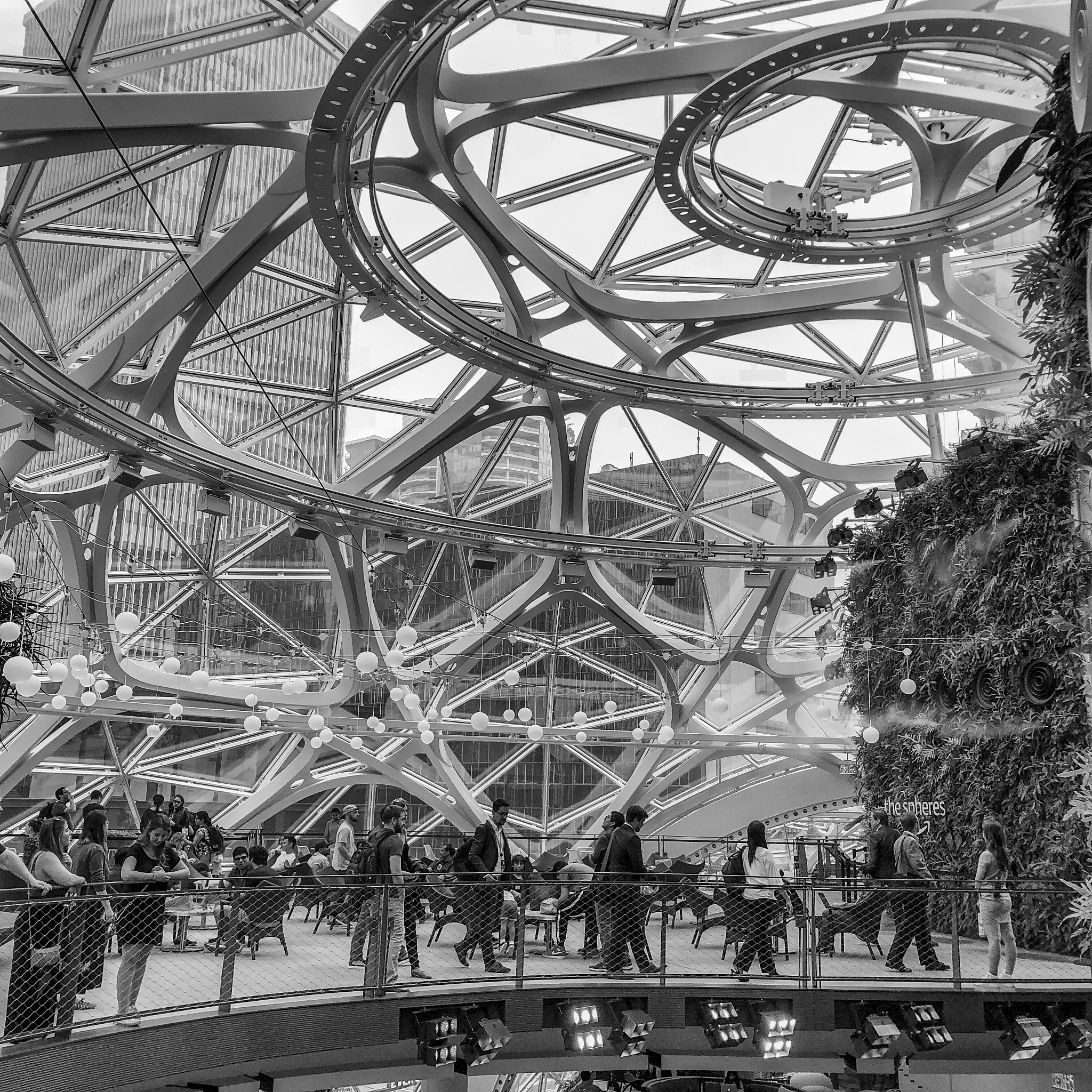 The Spheres, a place where employees can think and work differently surrounded by plants.  by Miguel Ramos