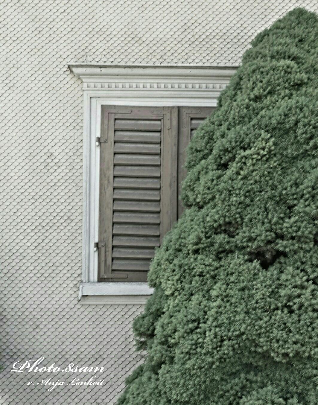 Secret Window by Anja