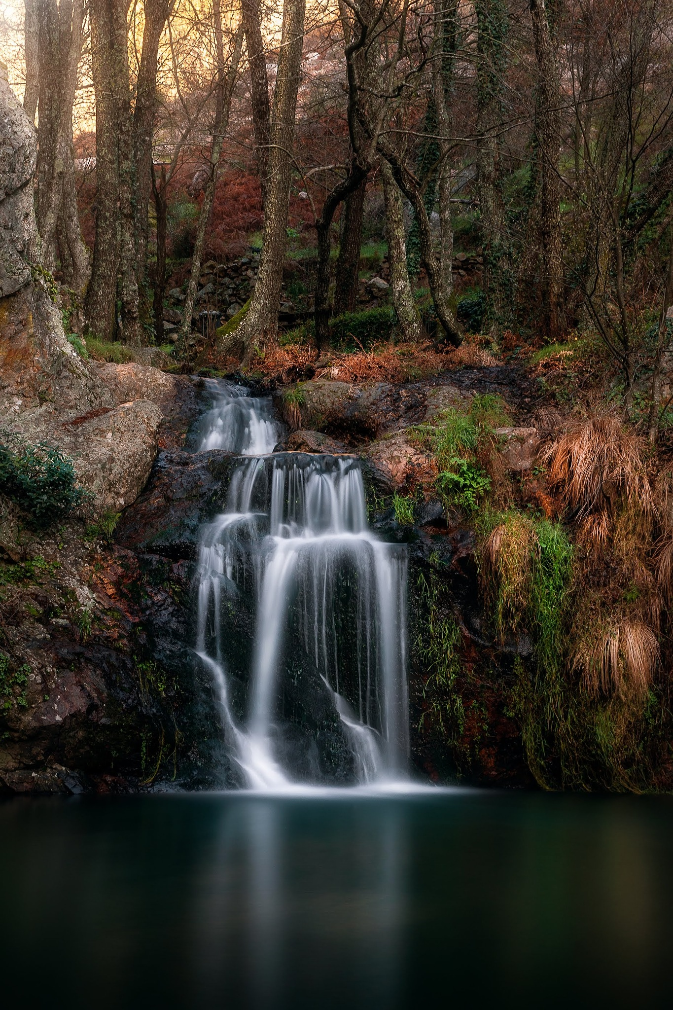 Nature Corners by Pedro Alves