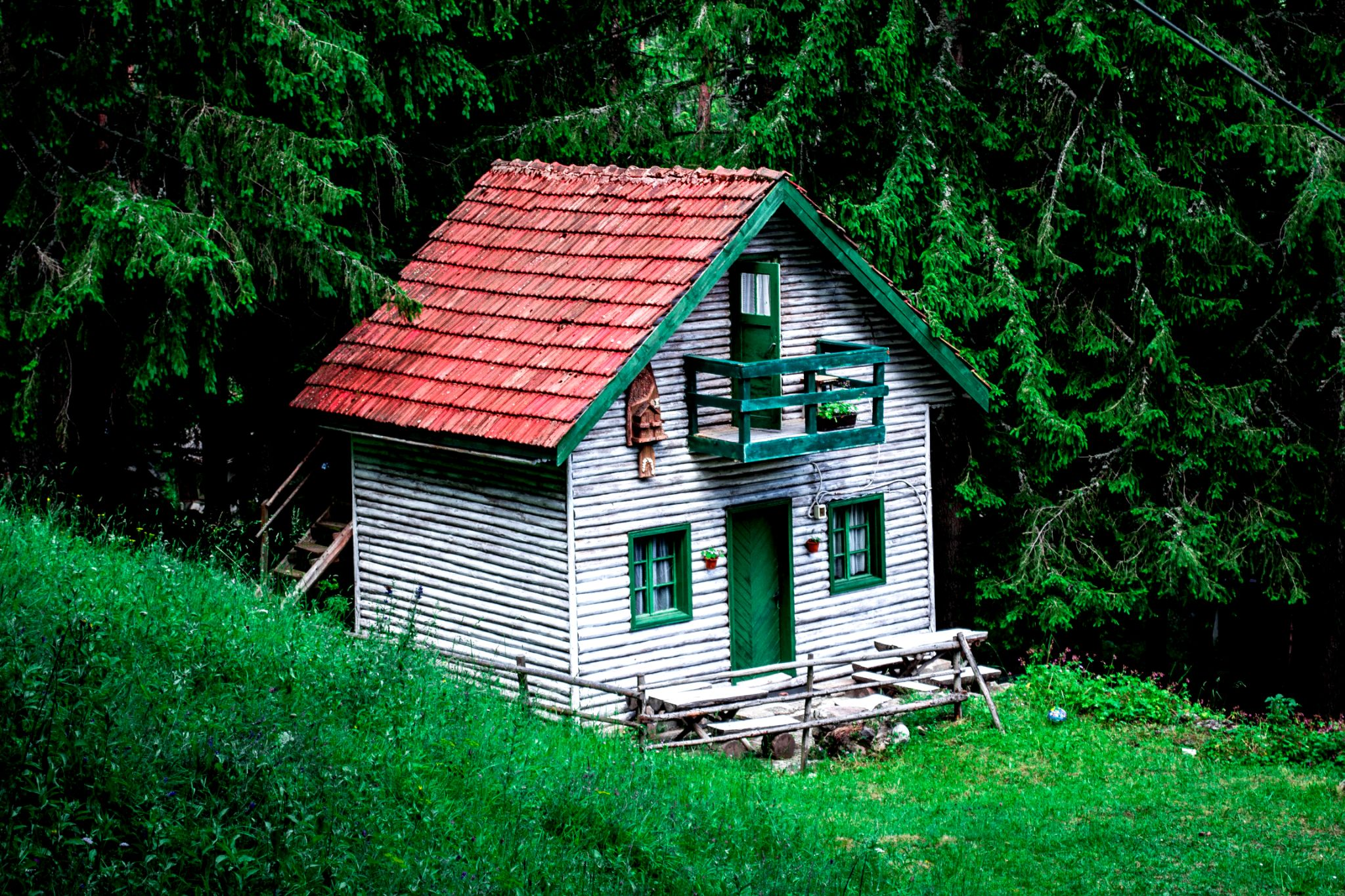 House in forest by Emil Topalov
