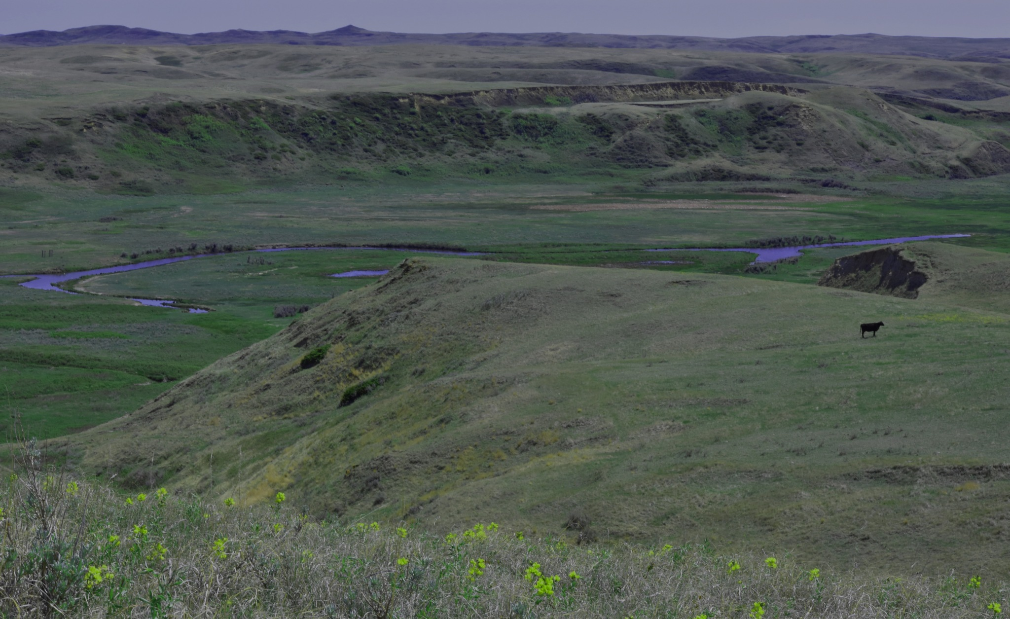 Coulee with Rock Creek sprawling over the plain.  by Dan Archer