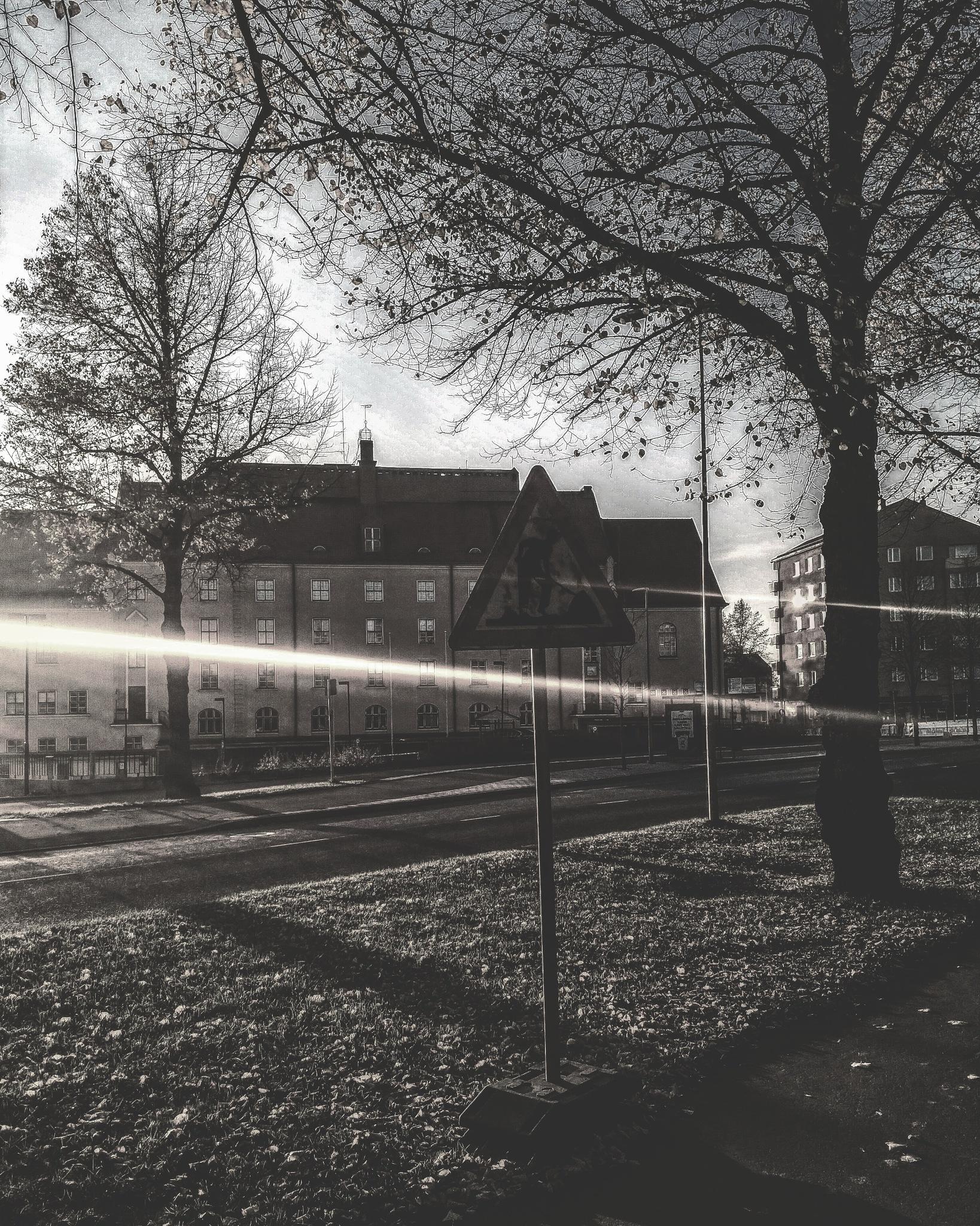 Untitled by Janne Karvonen