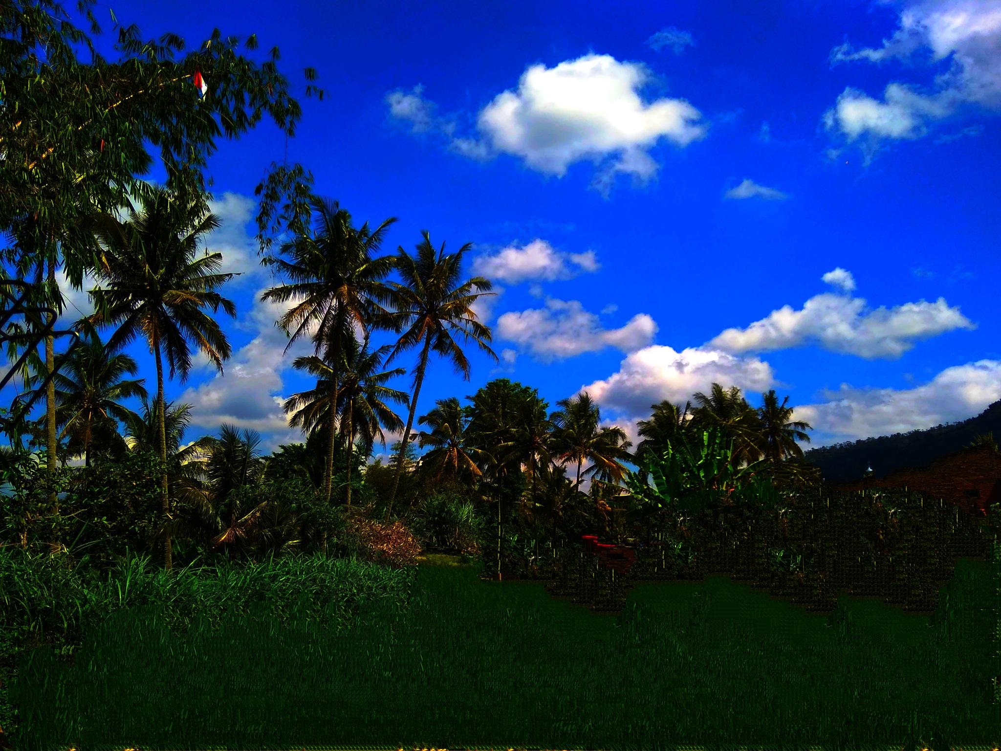 Untitled by Agus Syuhud