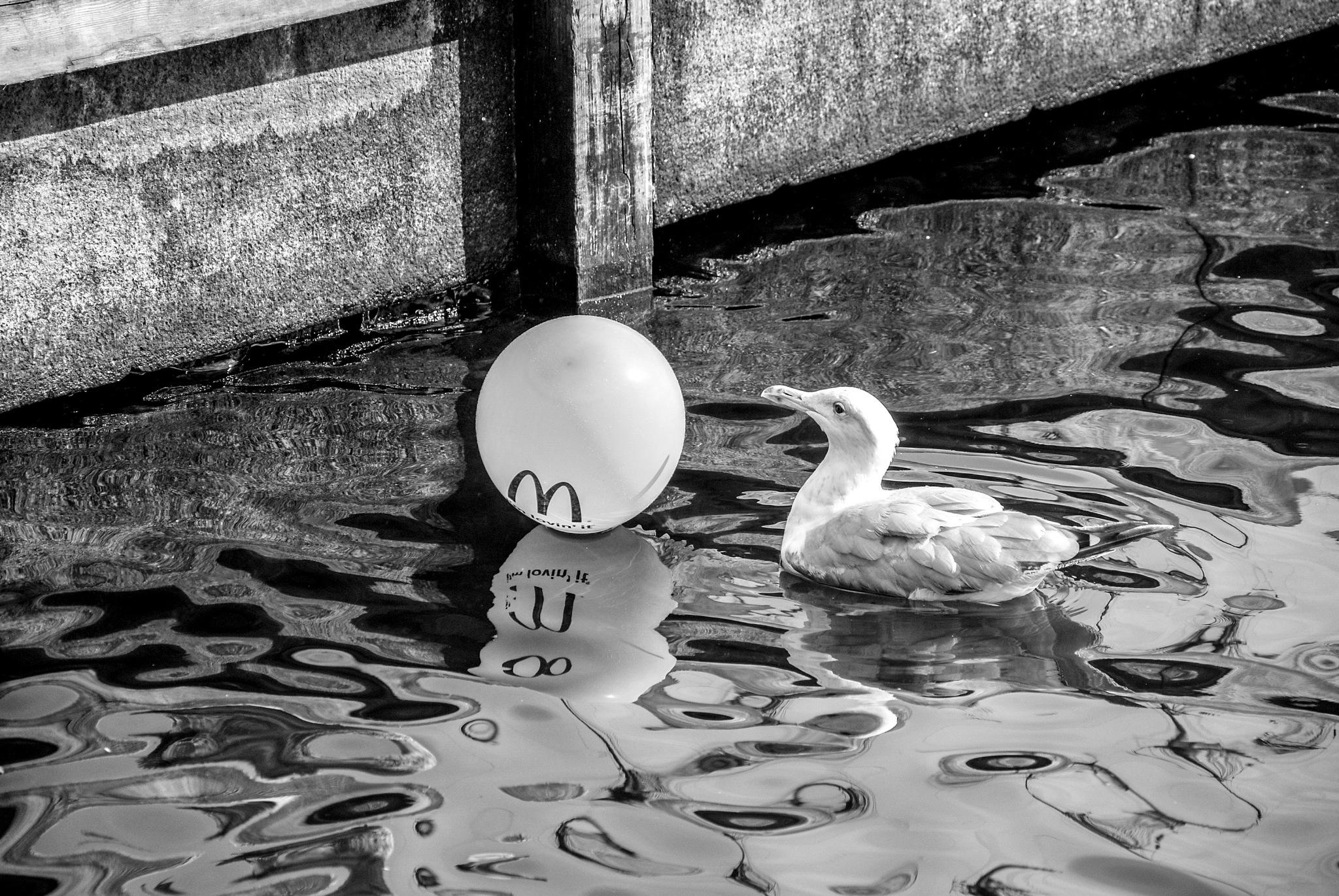 Floating by Benjamin G.