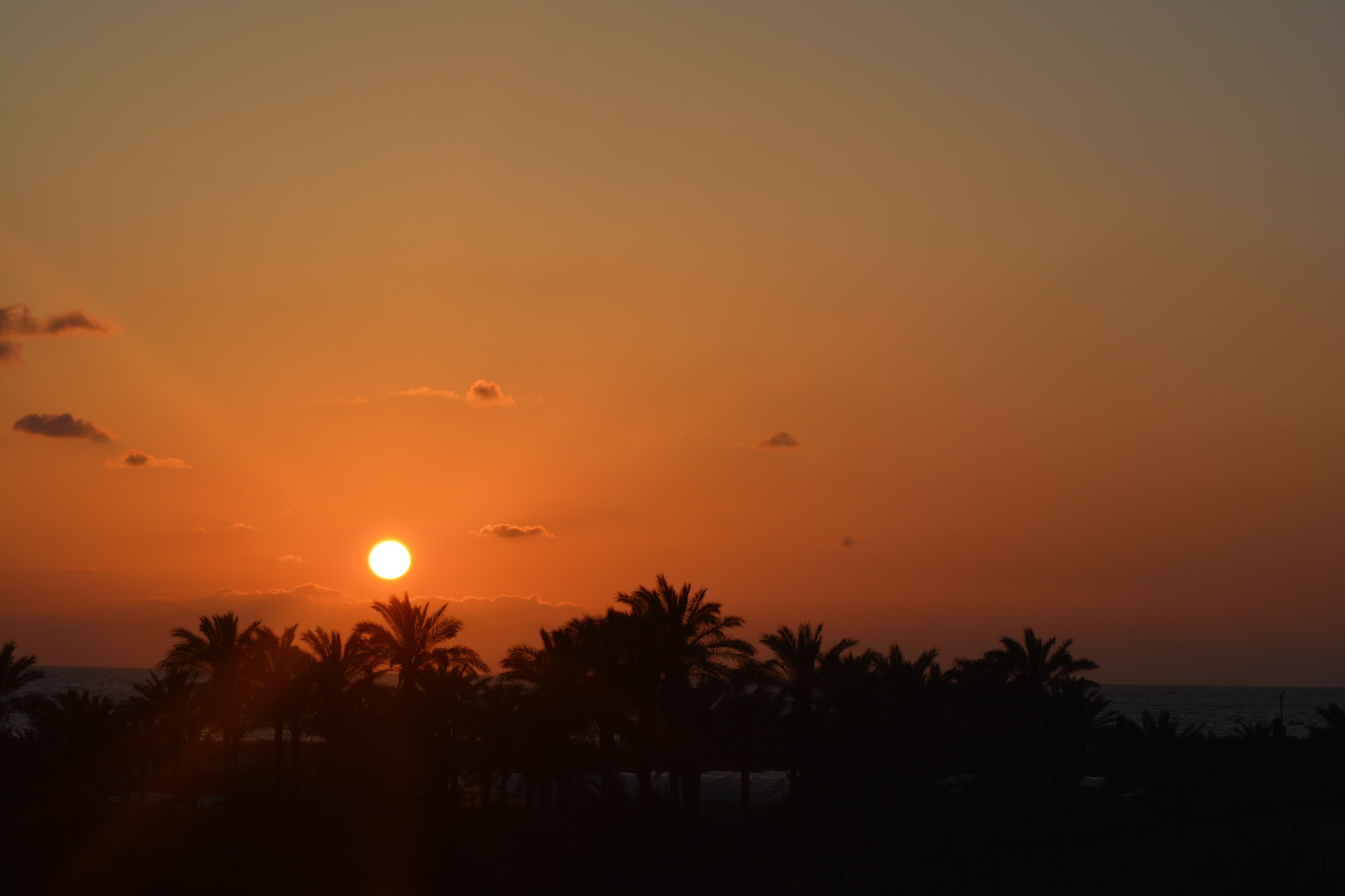 Sunset by amanyshammala