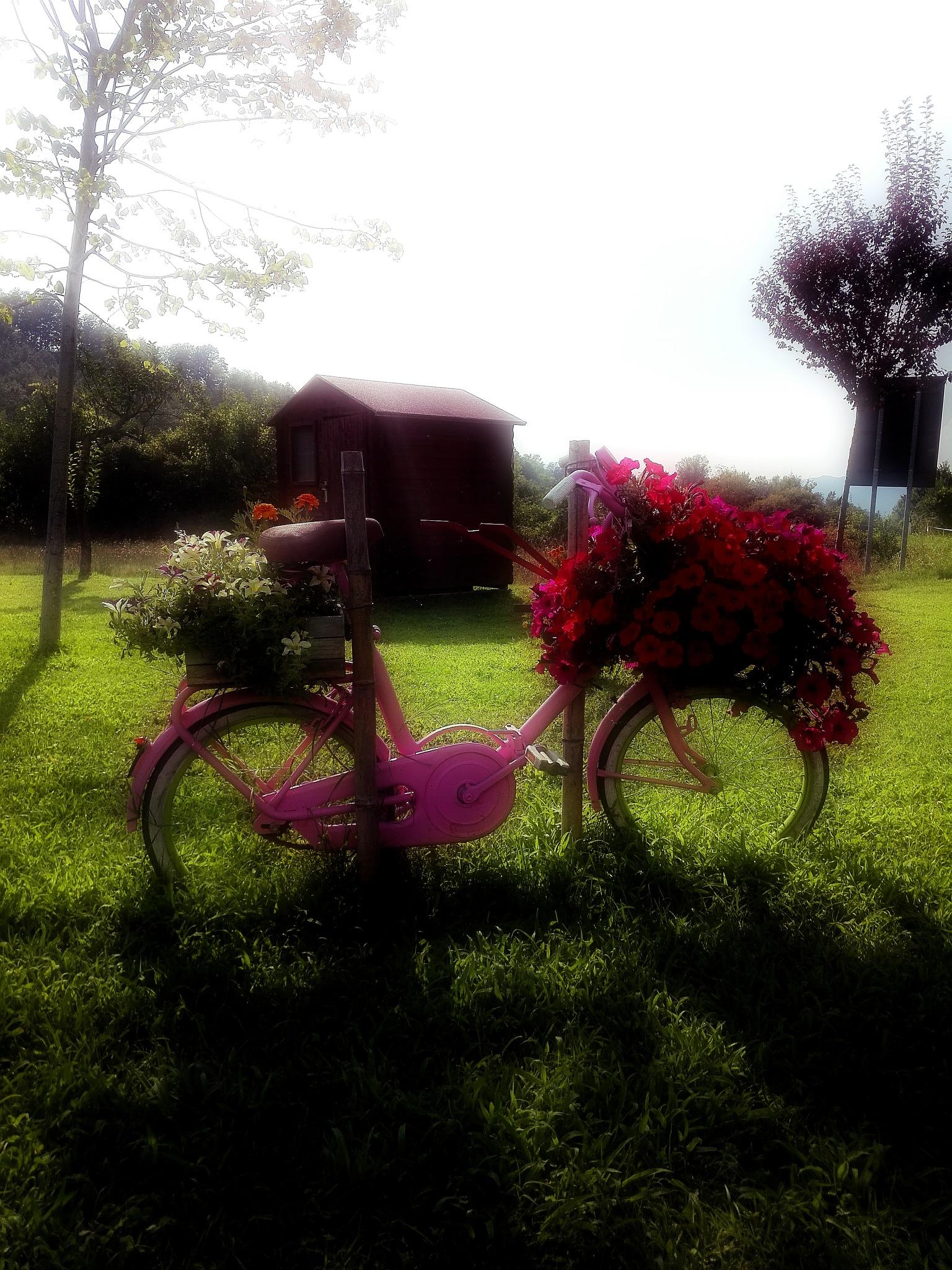 the flowers on the bike by  Gaelle Le Meur