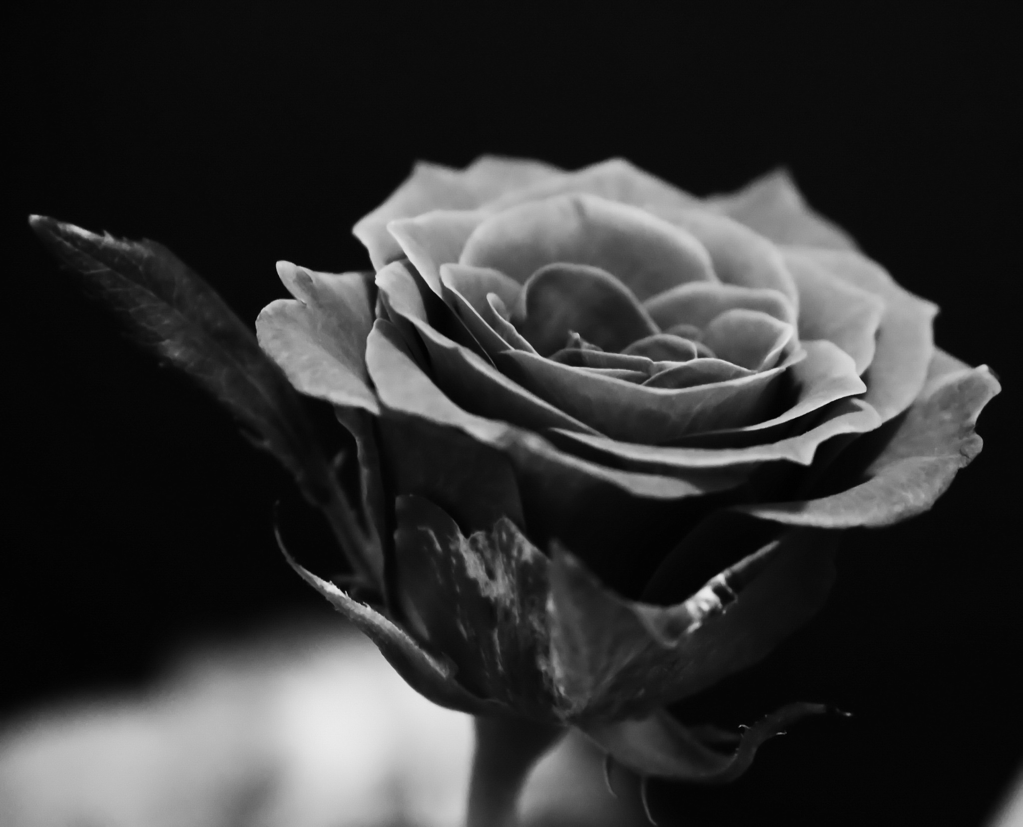 wearing black... by ervin