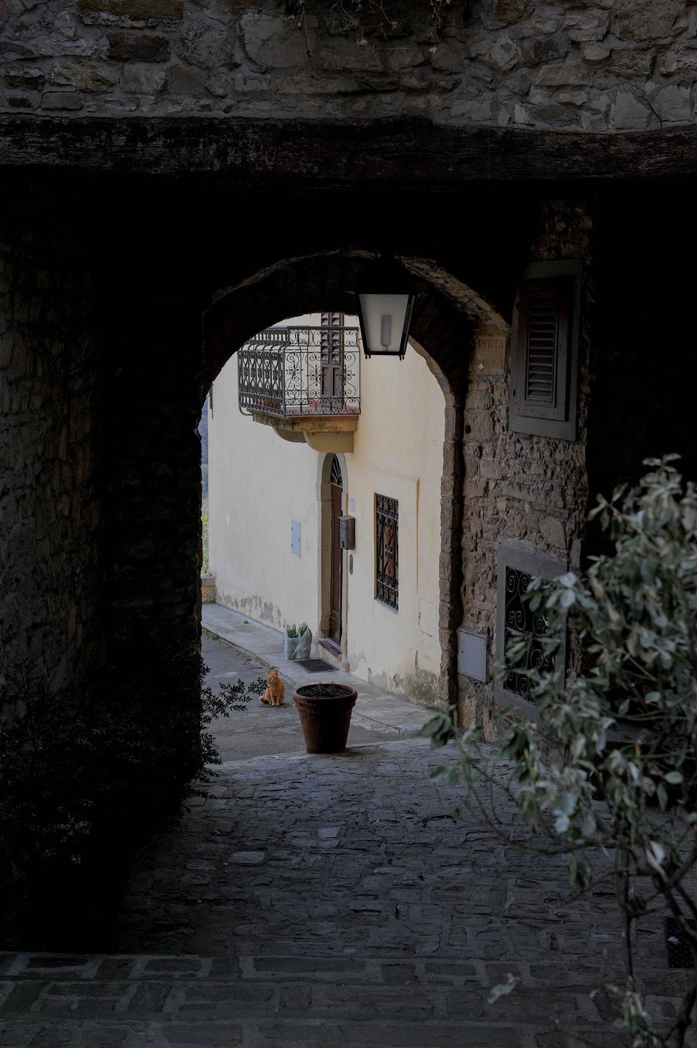 Big Red - Tuscany, Italy 2016 by Robert Malin Young