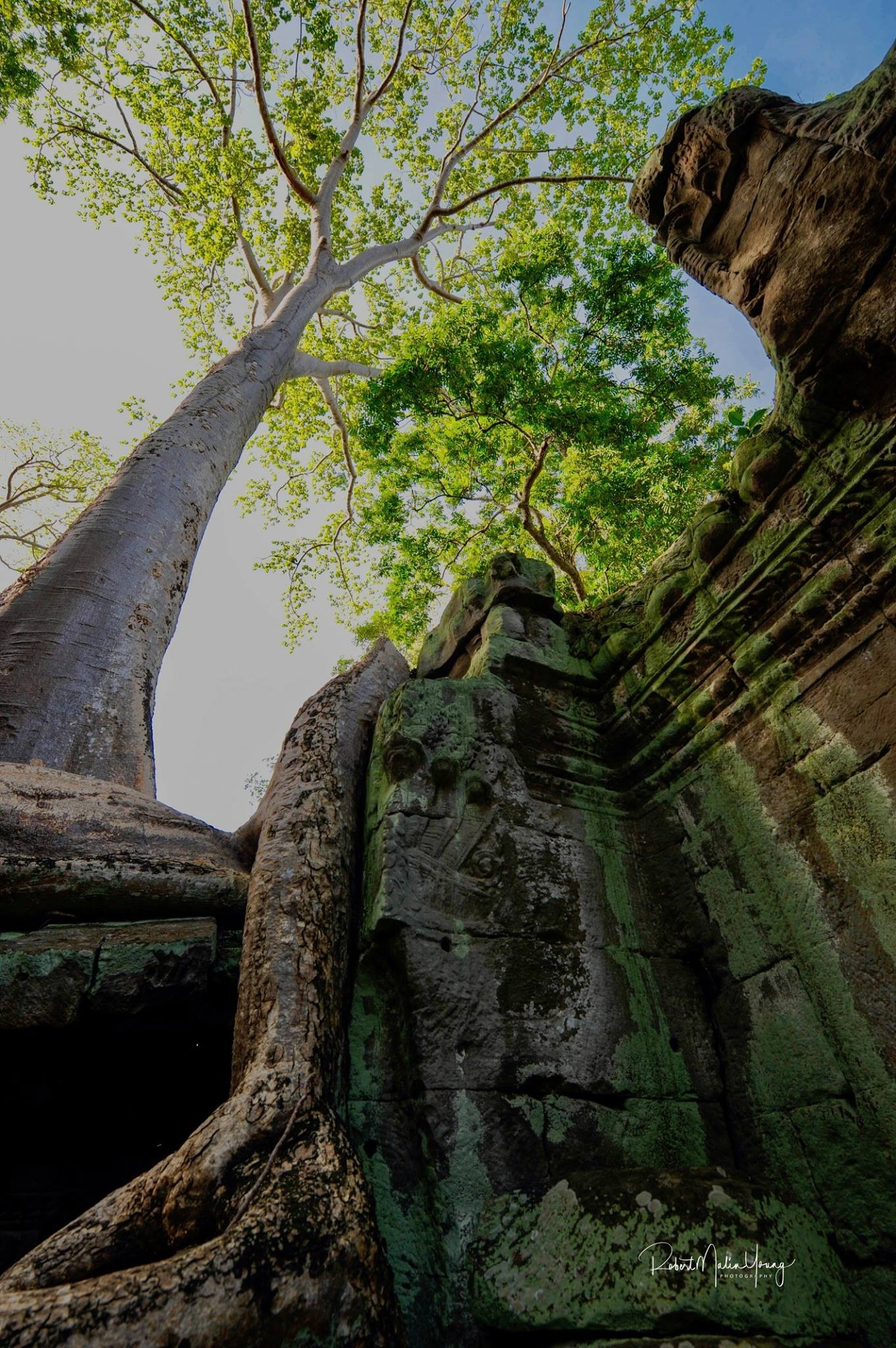 Anchor Thom, Cambodia 2018 by Robert Malin Young