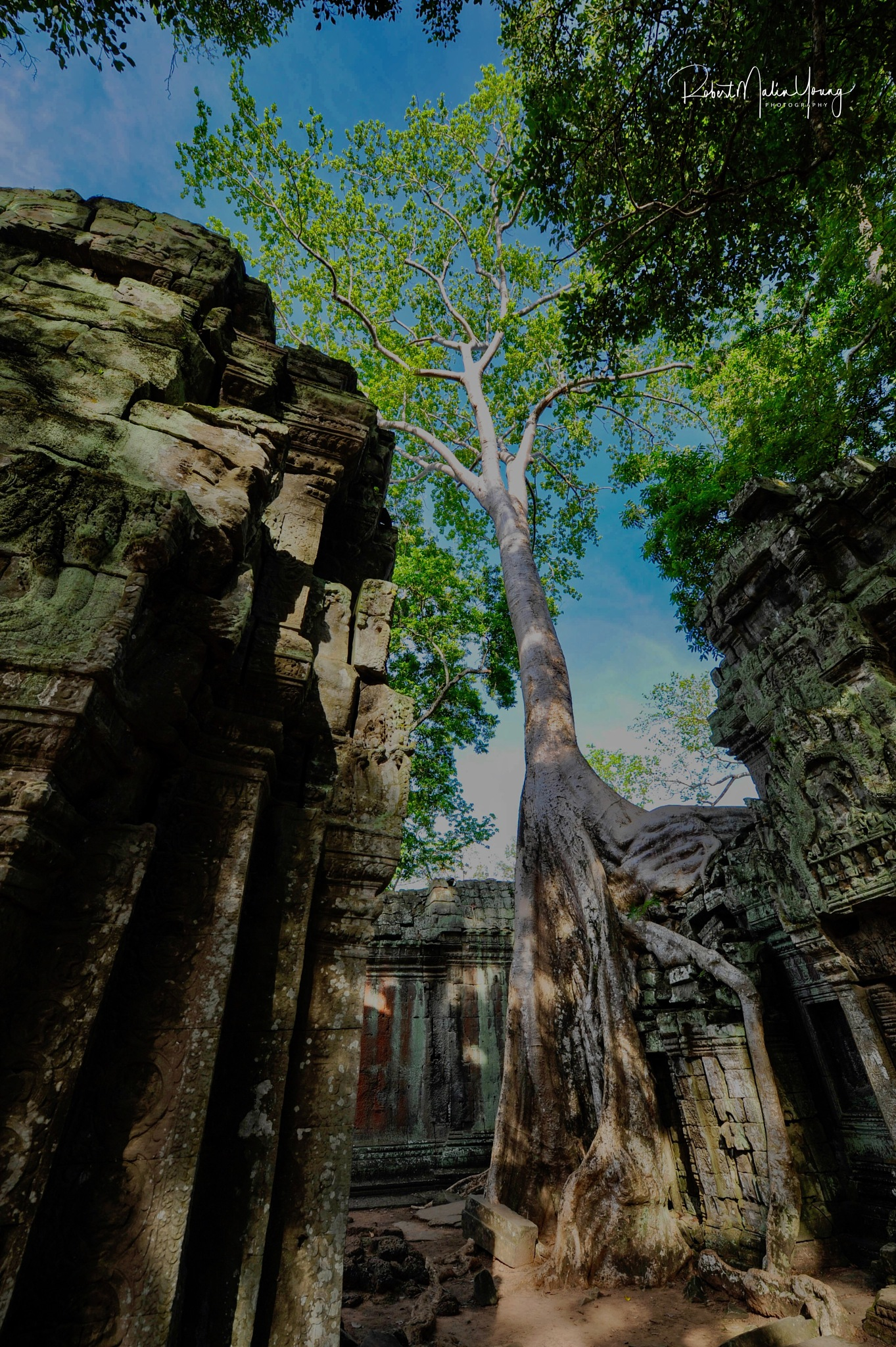 Return to SE Asia - 2018 by Robert Malin Young