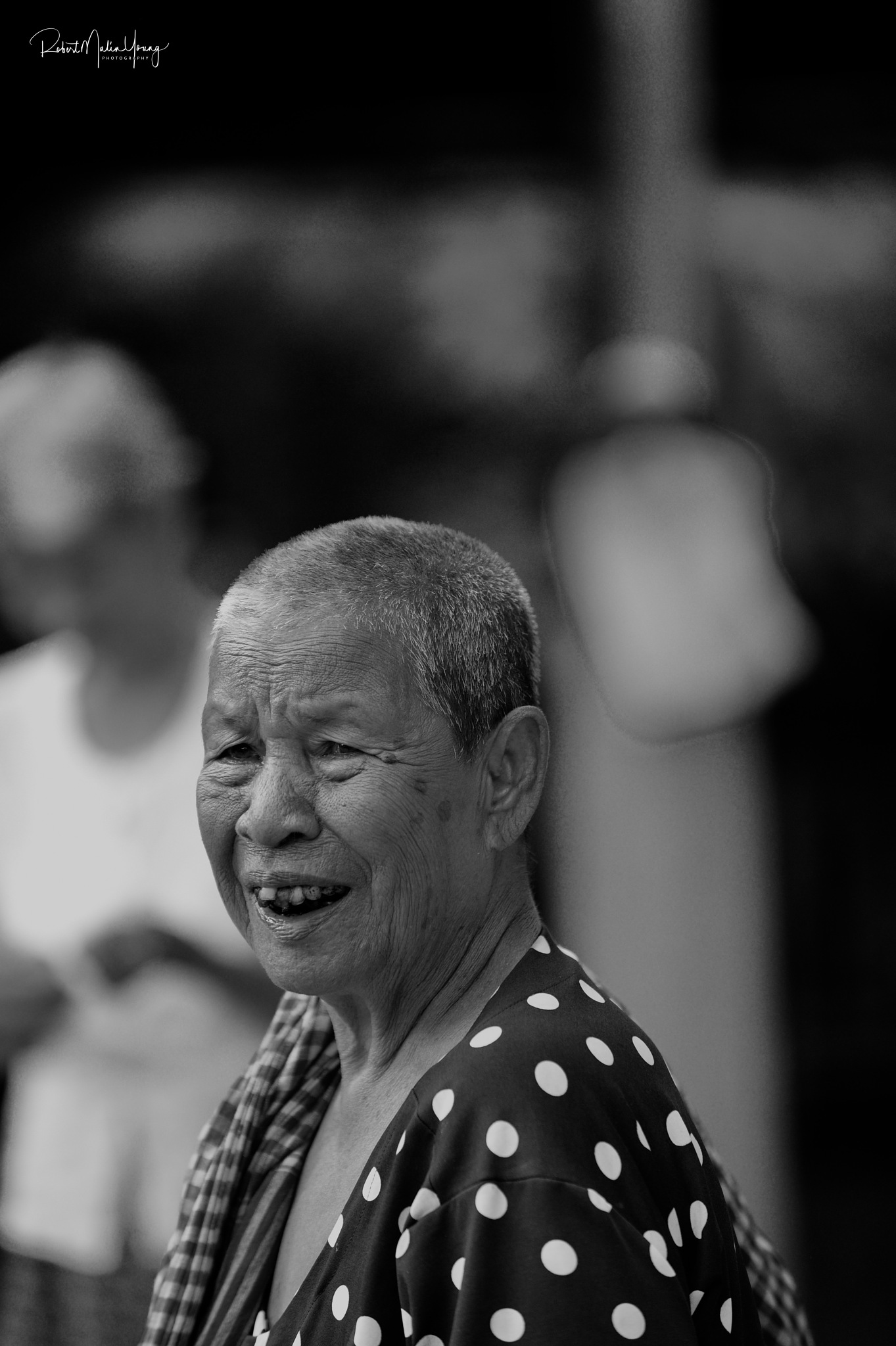 Cambodia and Viet Nam 2018 by Robert Malin Young