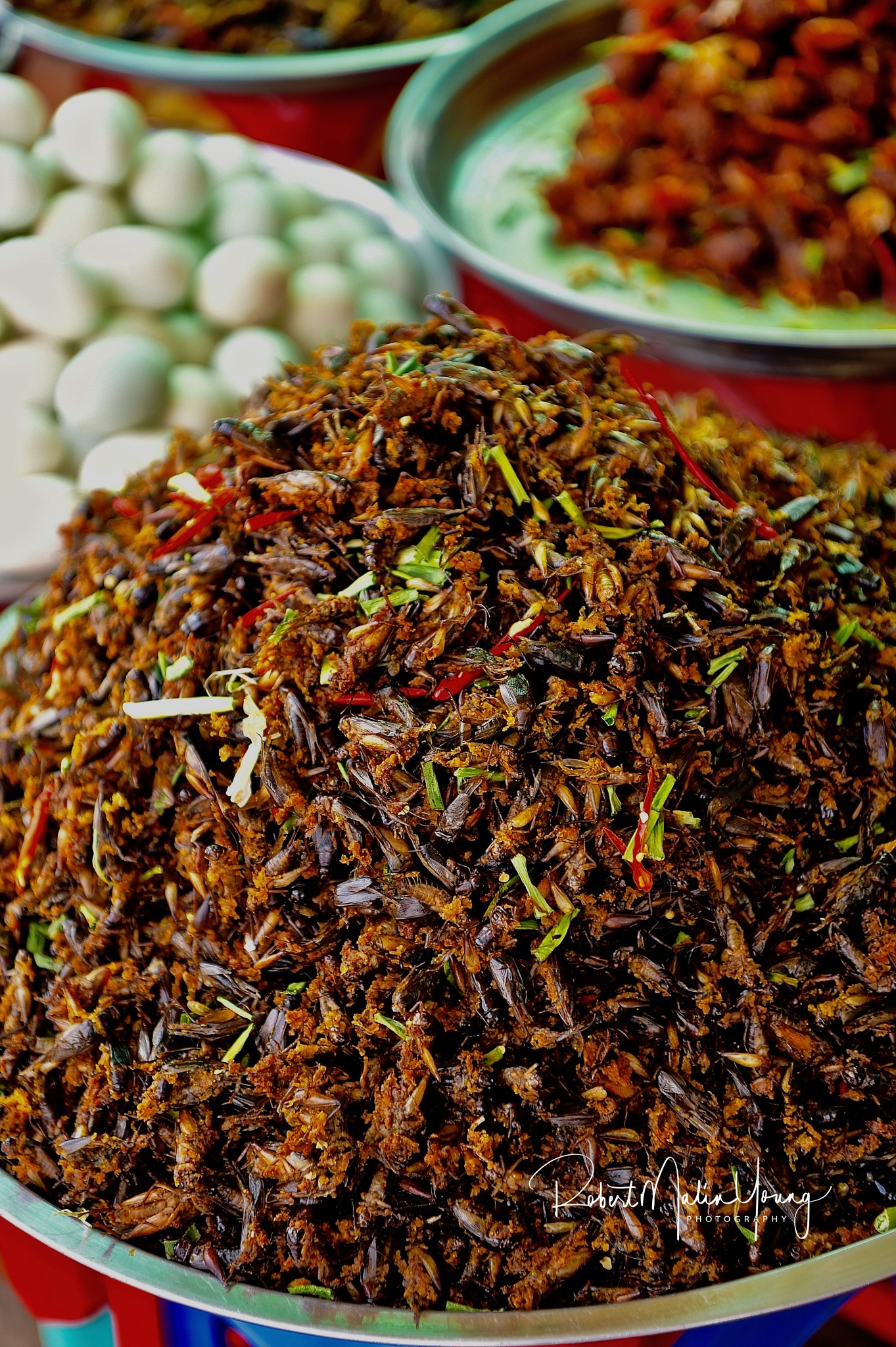 And as a rather crunchy appetizer - why not colorful mixed insects? - Laos 2018 by Robert Malin Young