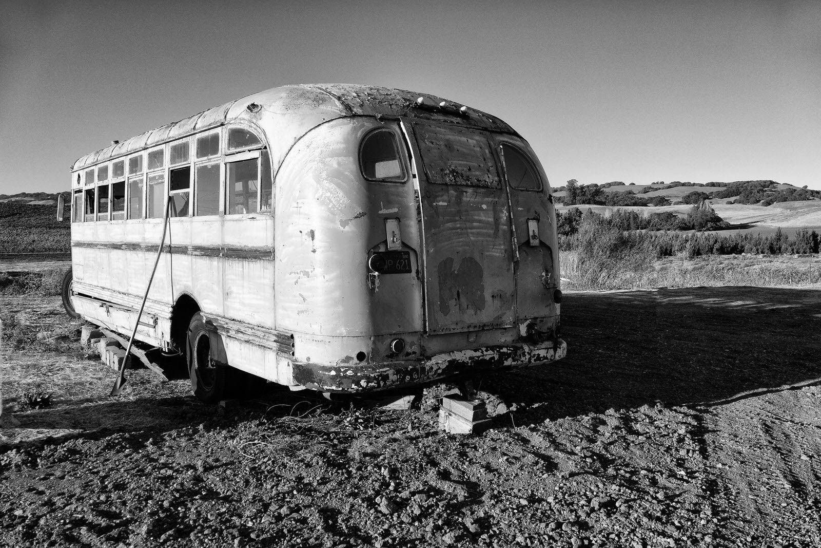 Magic Bus by Jose Lopez