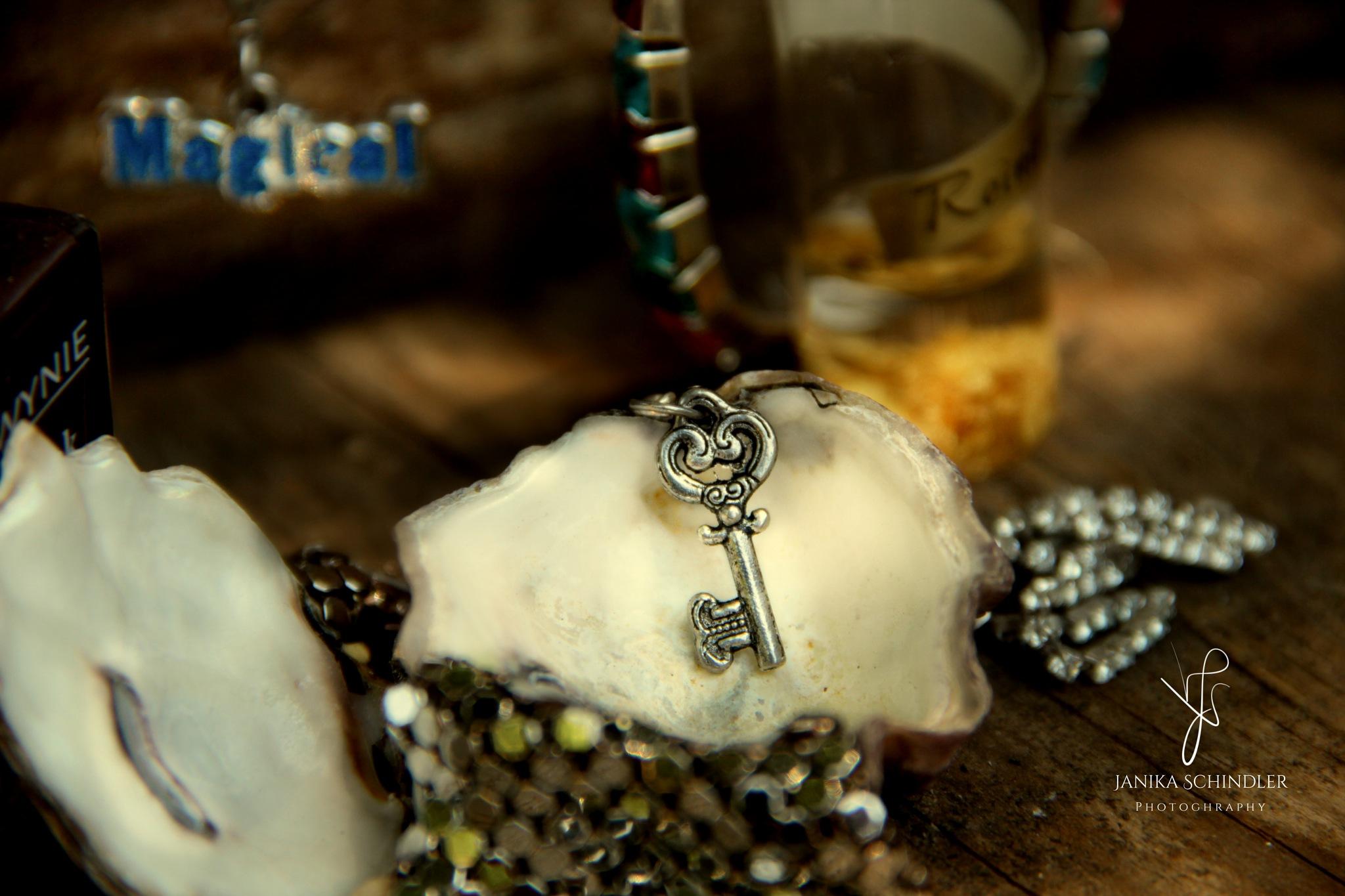 The magic key:) by Janika Schindler