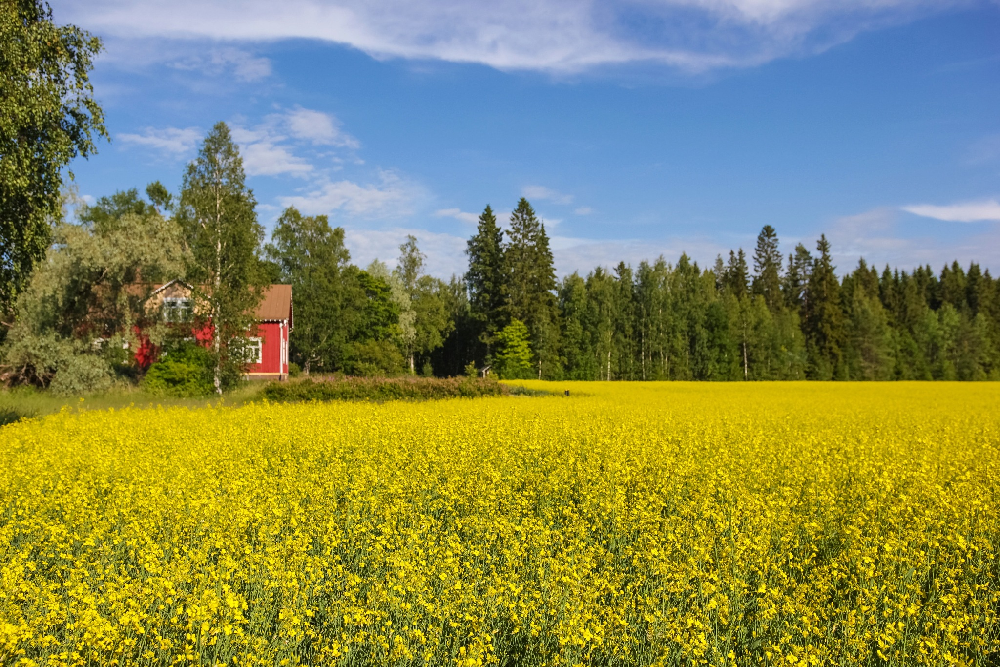 Finnish views by Joonas Pöytäniemi
