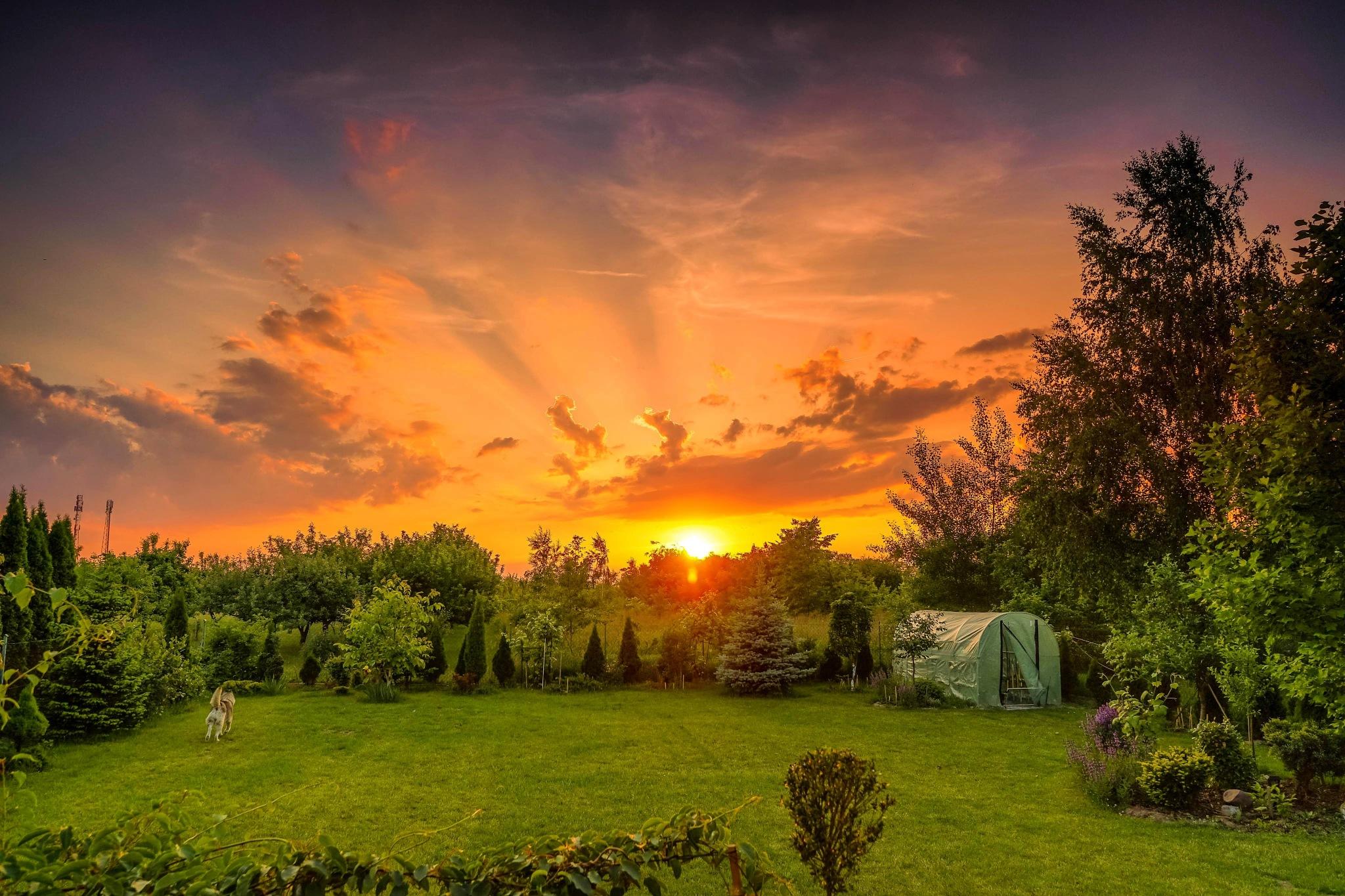 my secret garden by Pawel M